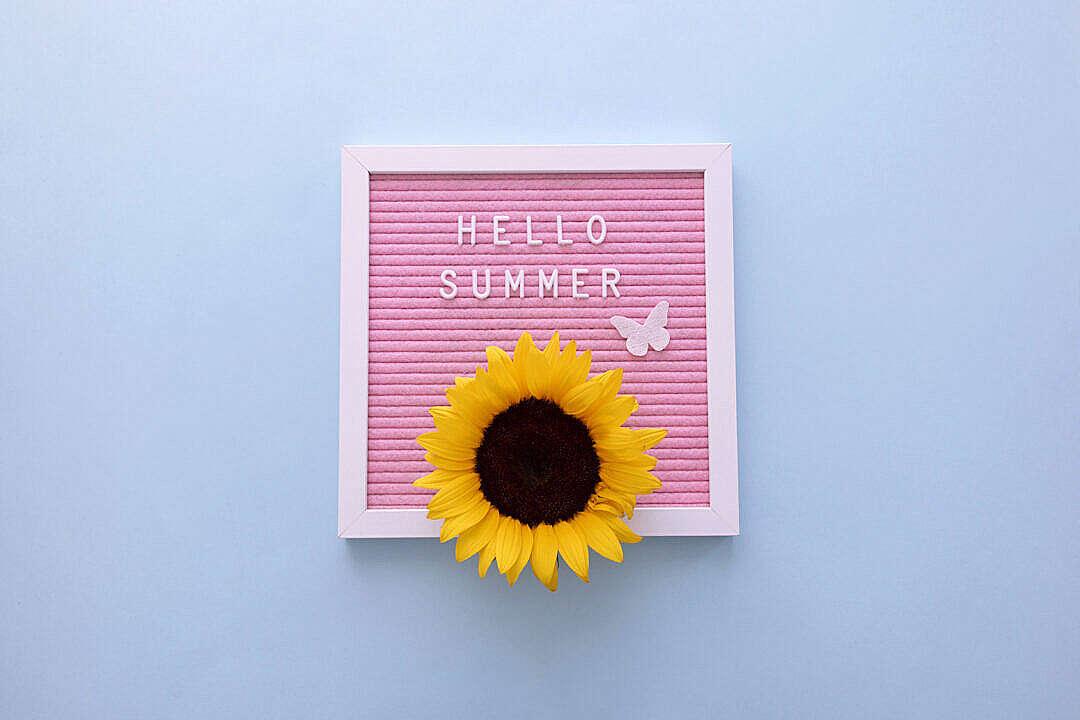 Download Hello Summer! FREE Stock Photo