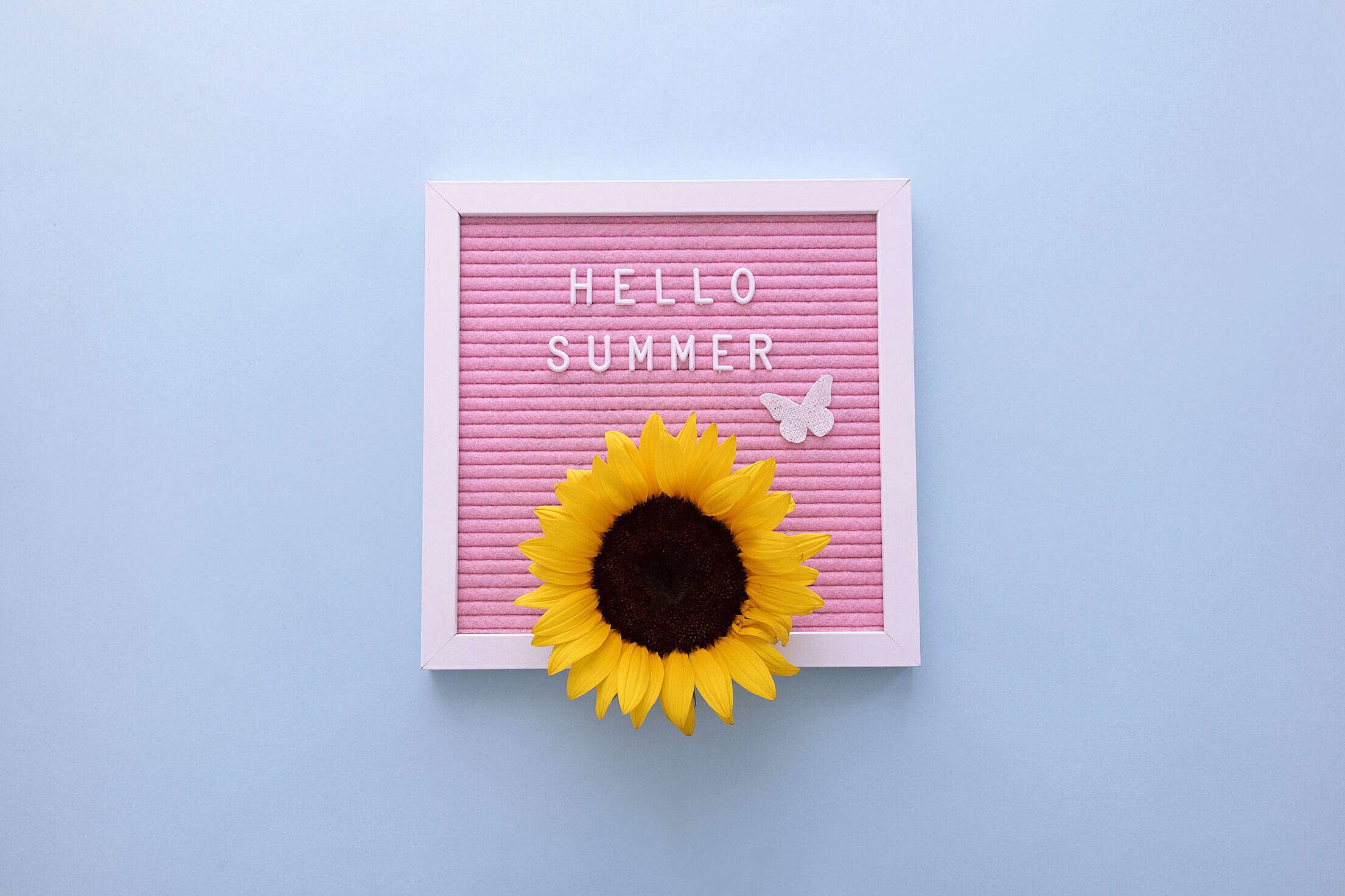 Hello Summer! Free Stock Photo