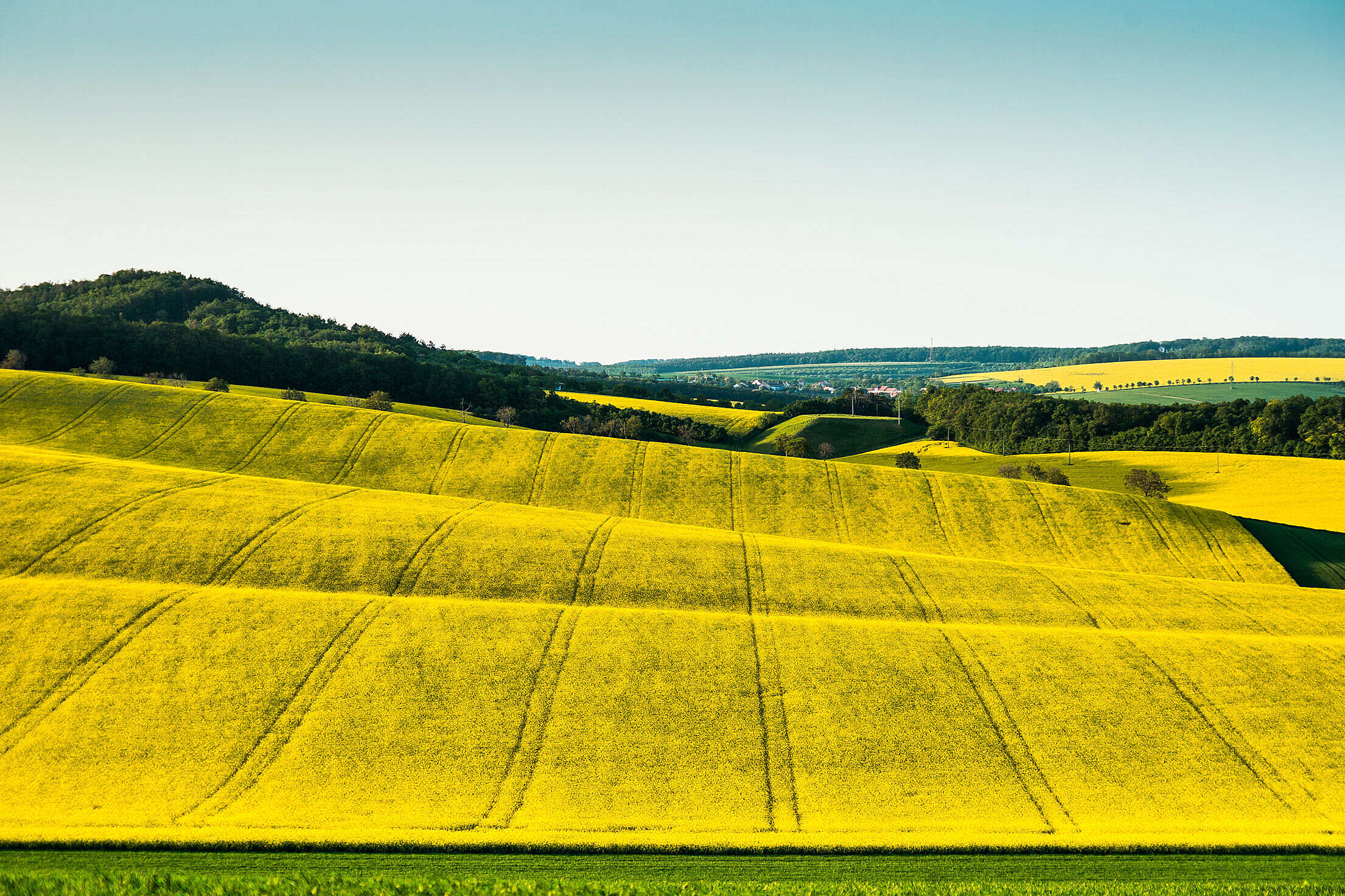 Hills and Fields of South Moravia, Czechia Free Stock Photo