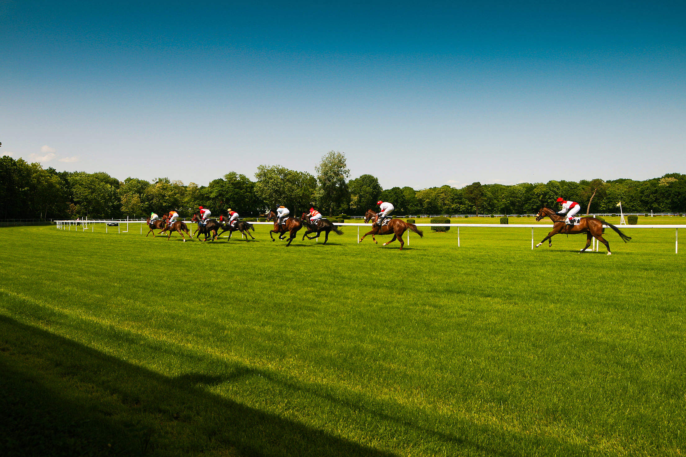 Horse Racing Oval Track Free Stock Photo