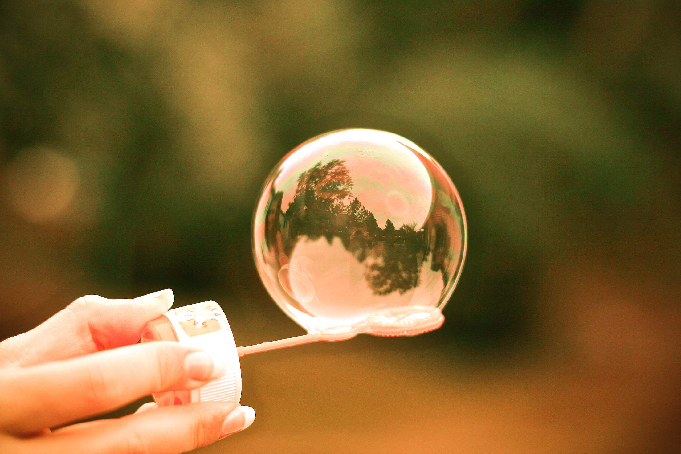 Just Colorful Bubble Free Stock Photo