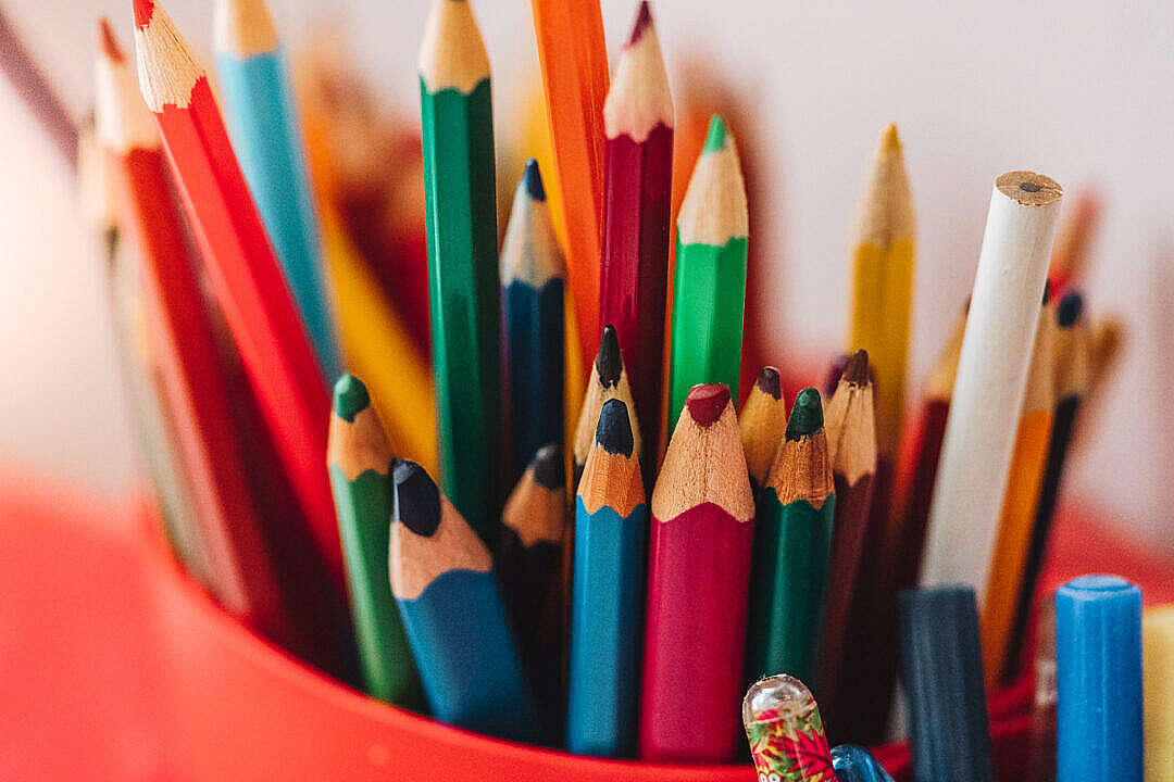 Download Kids Color Pencils in a Cup FREE Stock Photo