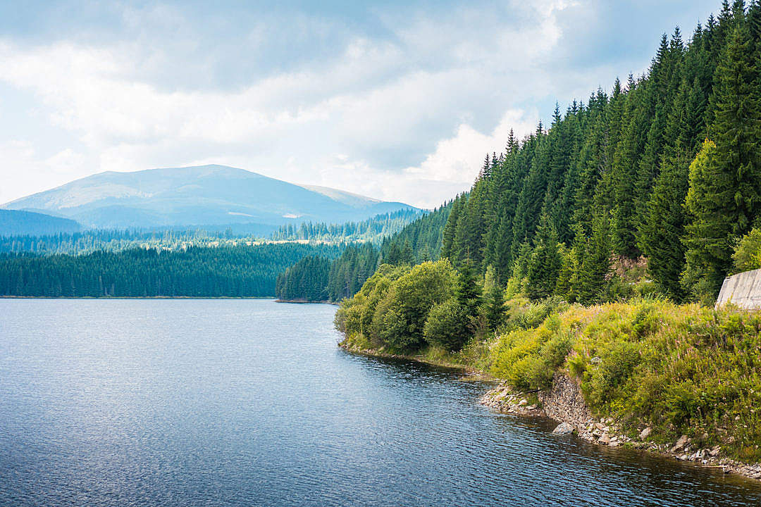 Download Lake Shore and Forests Scenery in Romania FREE Stock Photo