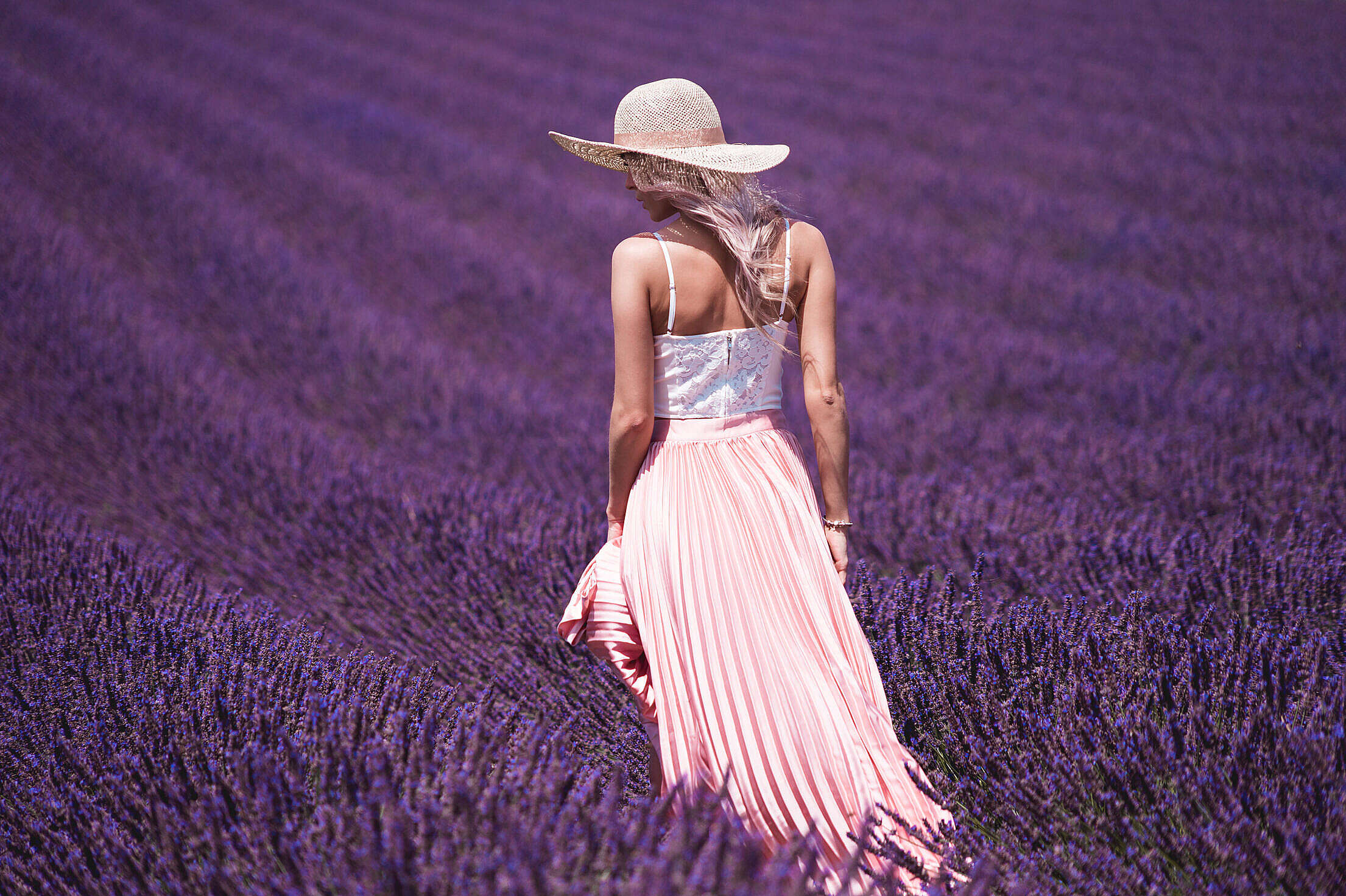 Lavender Field and Beautiful Woman Free Stock Photo