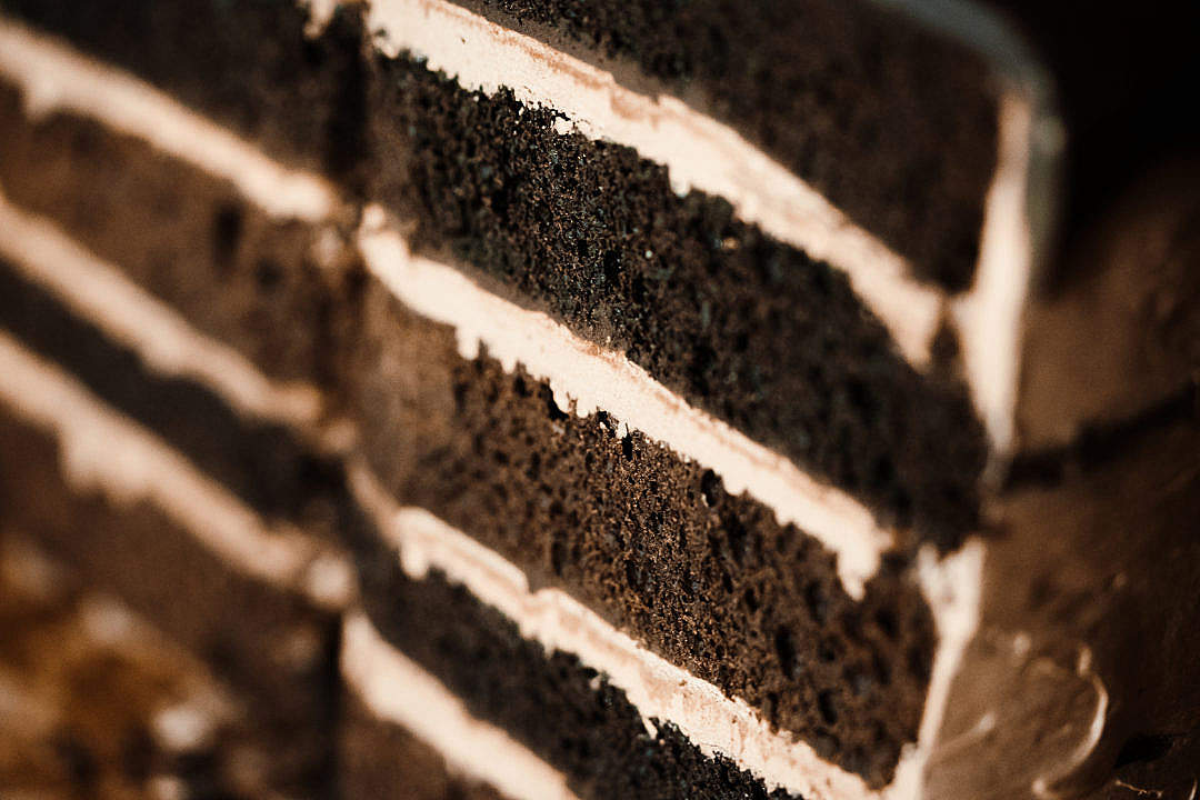 Download Layers in Homemade Cake Close Up FREE Stock Photo