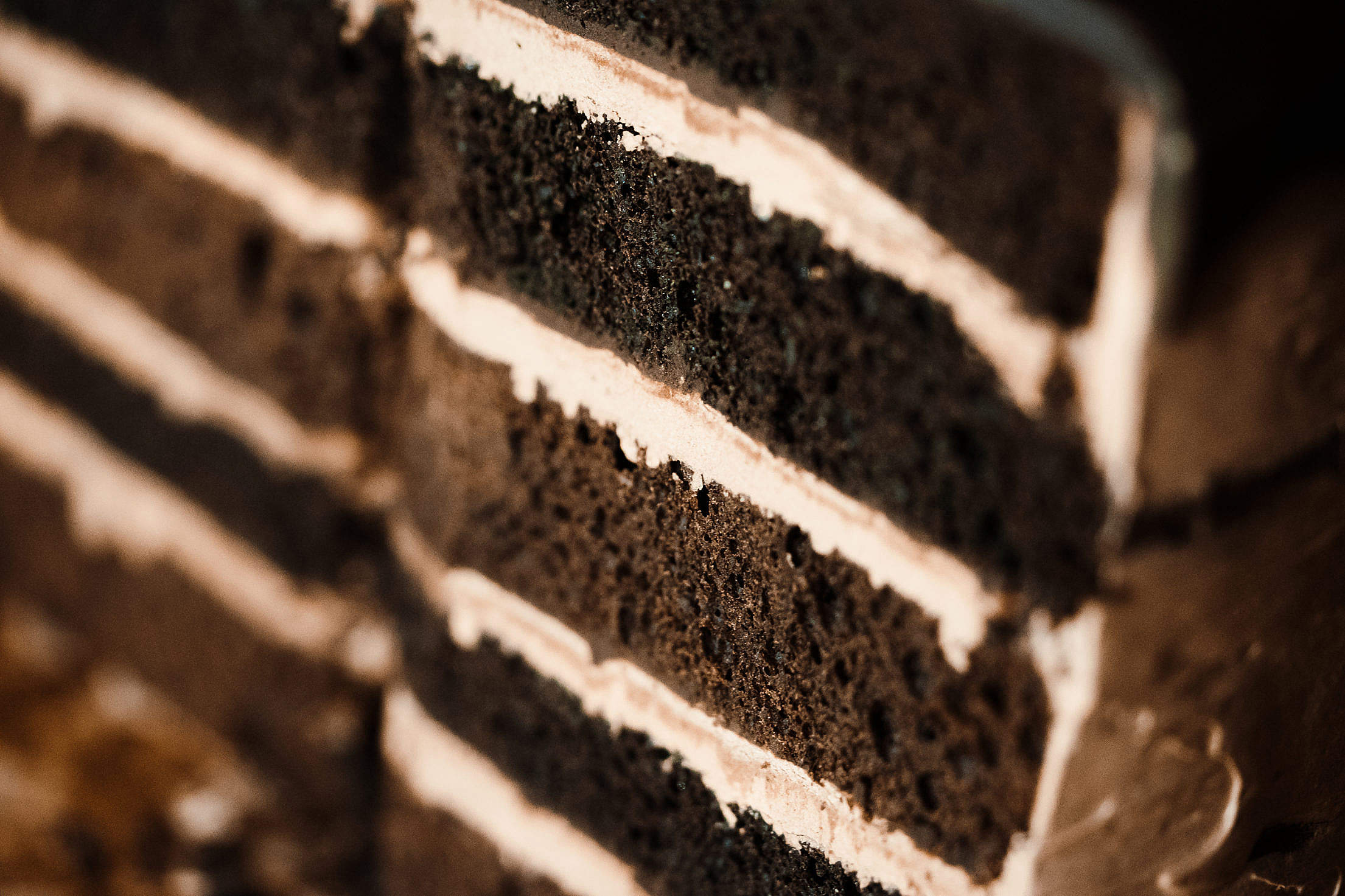Layers in Homemade Cake Close Up Free Stock Photo