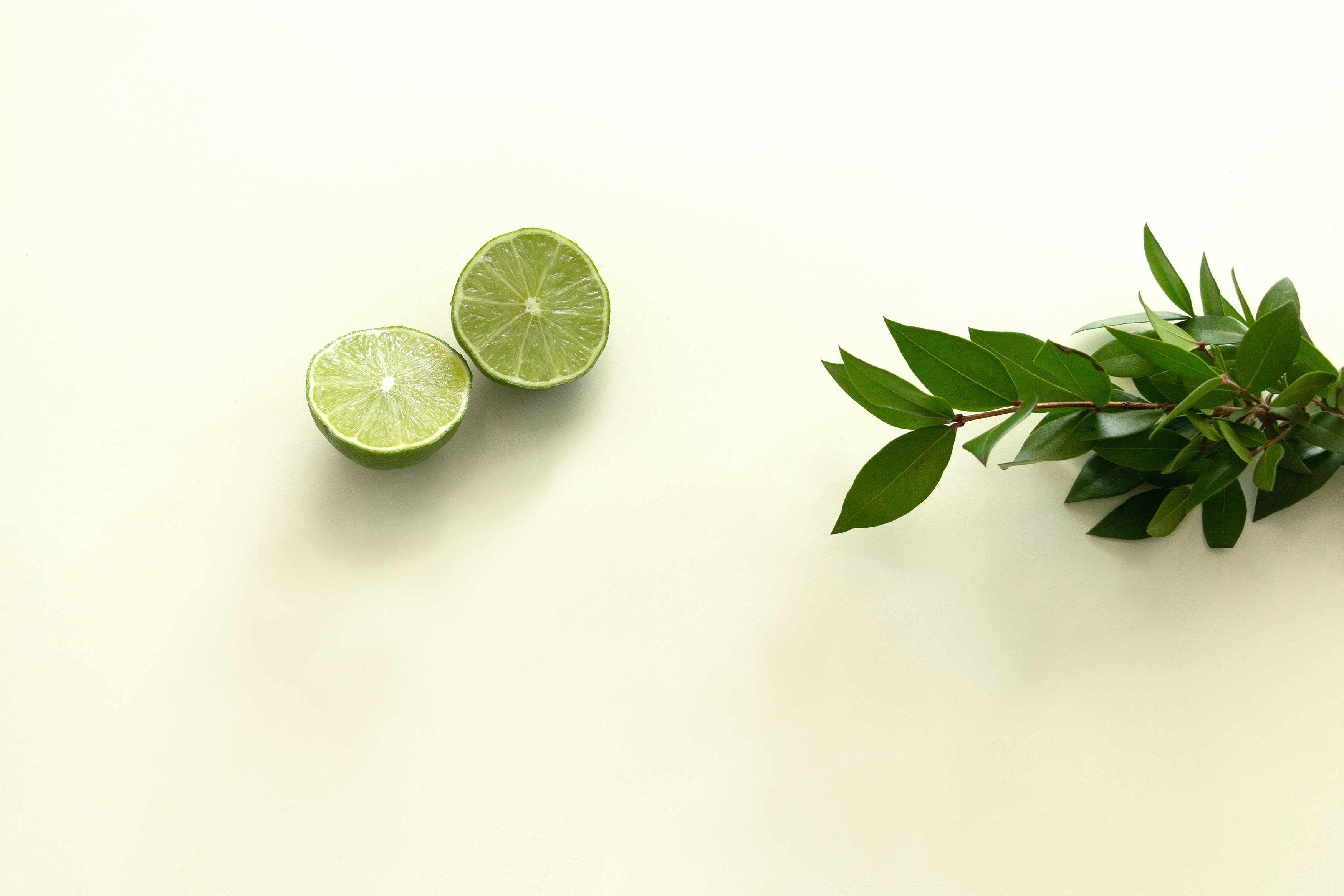 Download Lime and Green Leaves FREE Stock Photo