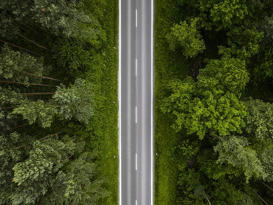 Download Lonely Road in the Woods Aerial FREE Stock Photo