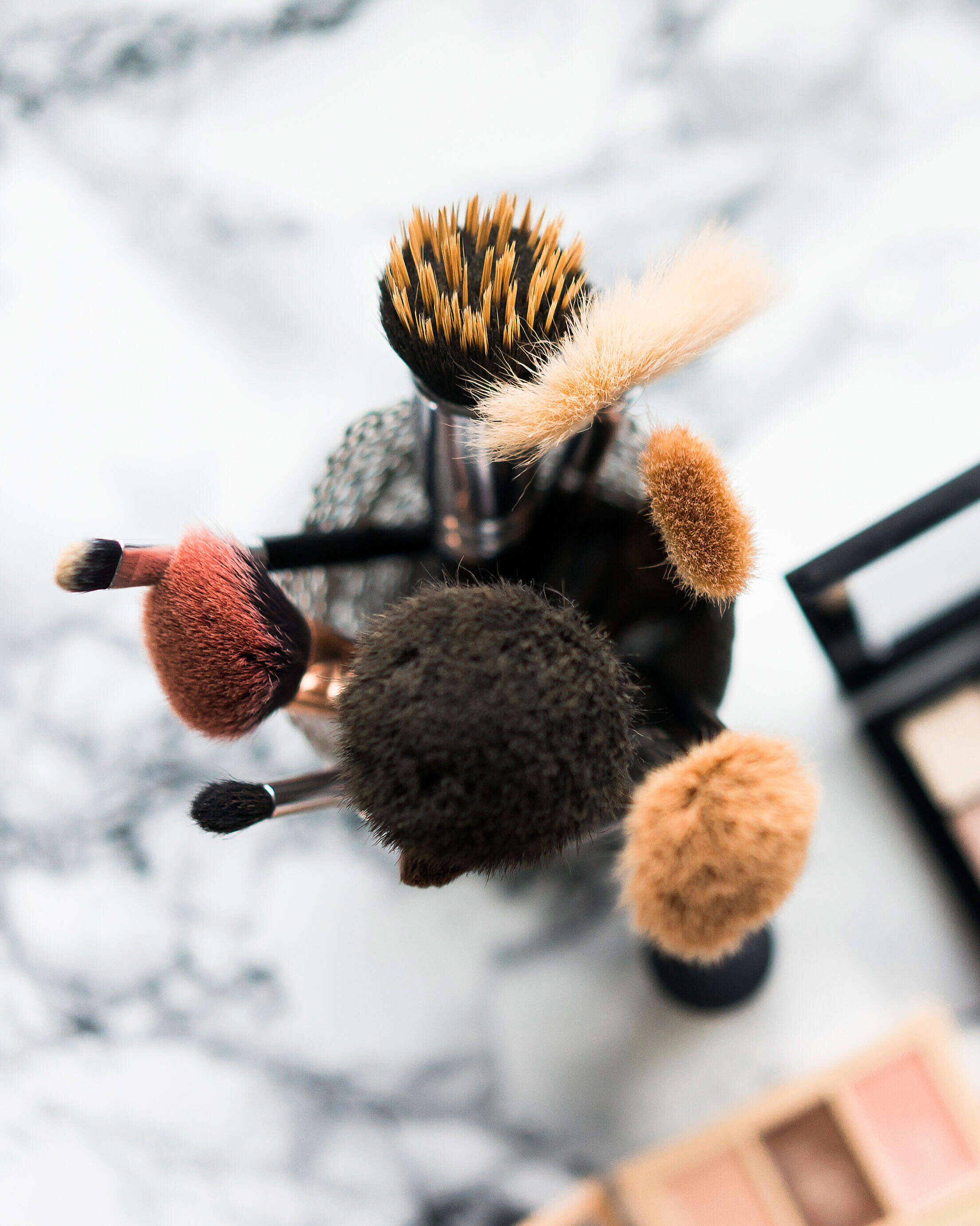 Makeup Brushes Vertical Free Stock Photo