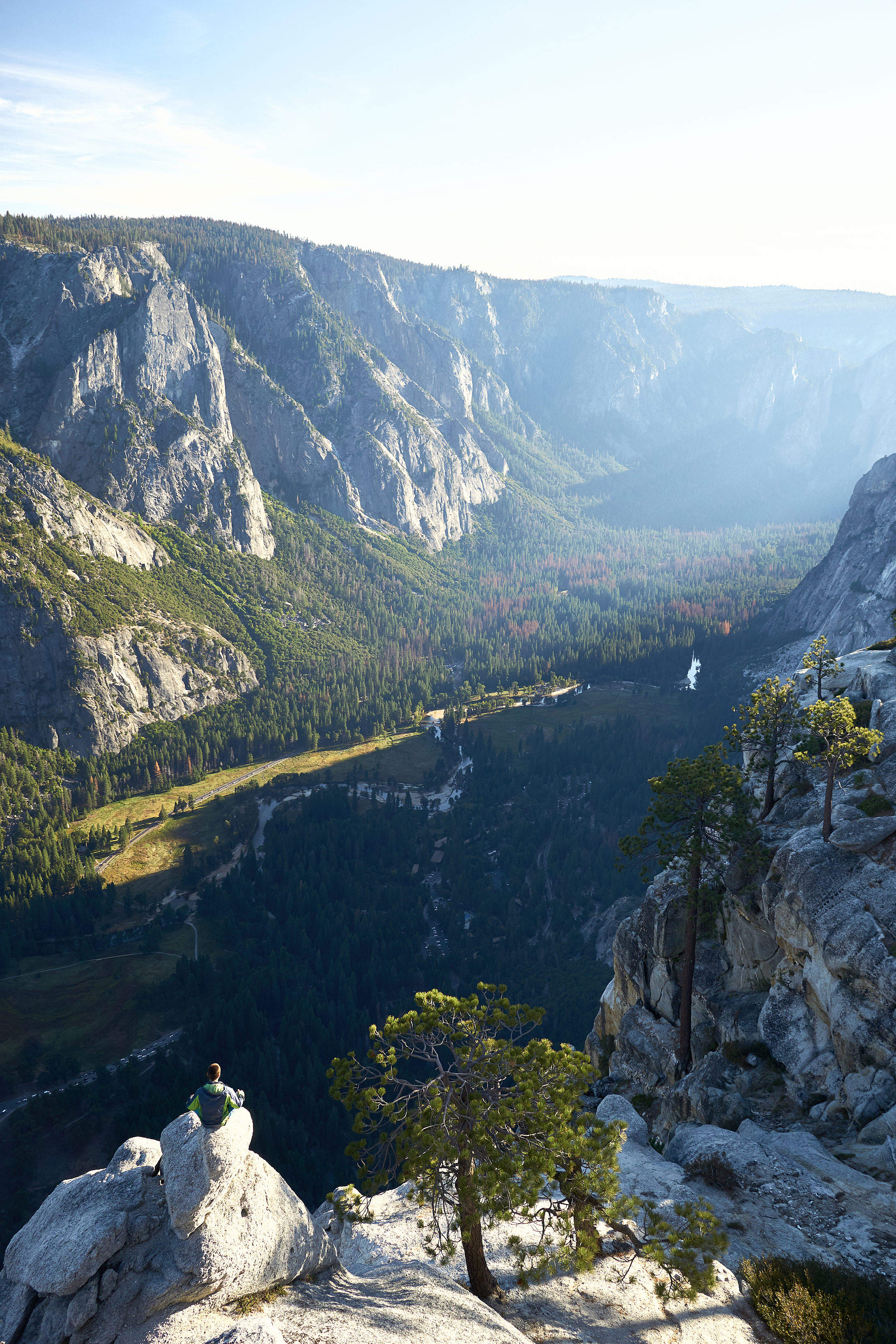 Man Enjoying The View into The Yosemite Valley Vertical Free Stock Photo