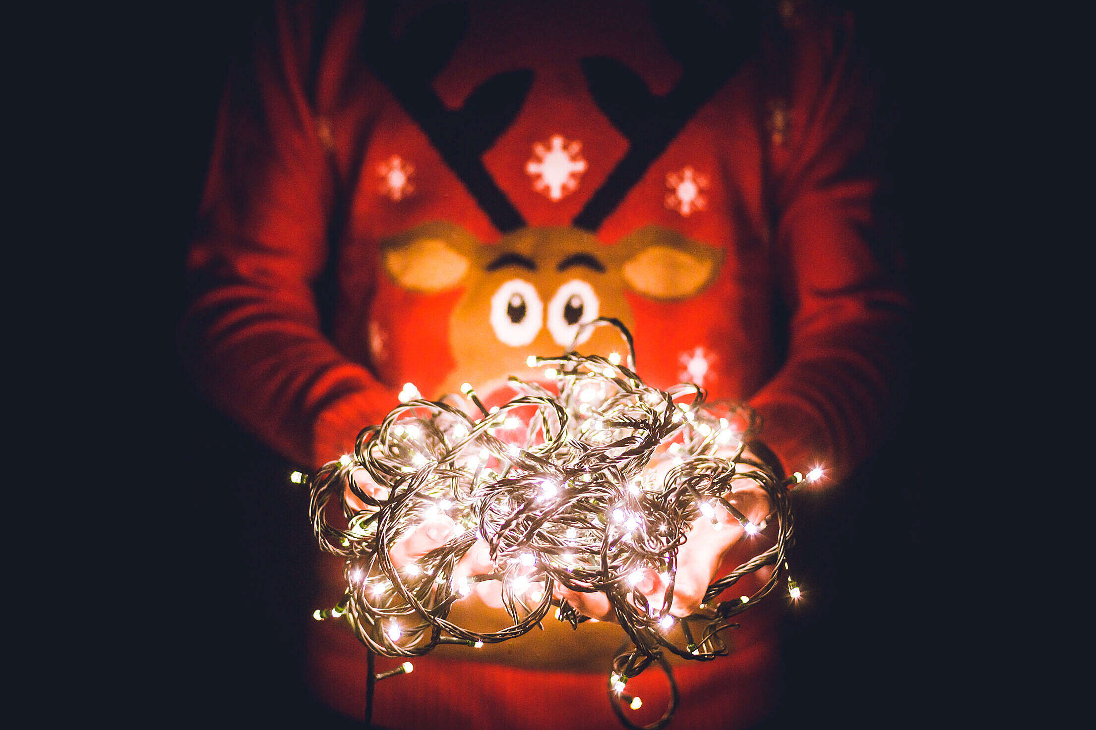 Man in Christmas Sweater Holding Christmas Lights Free Stock Photo