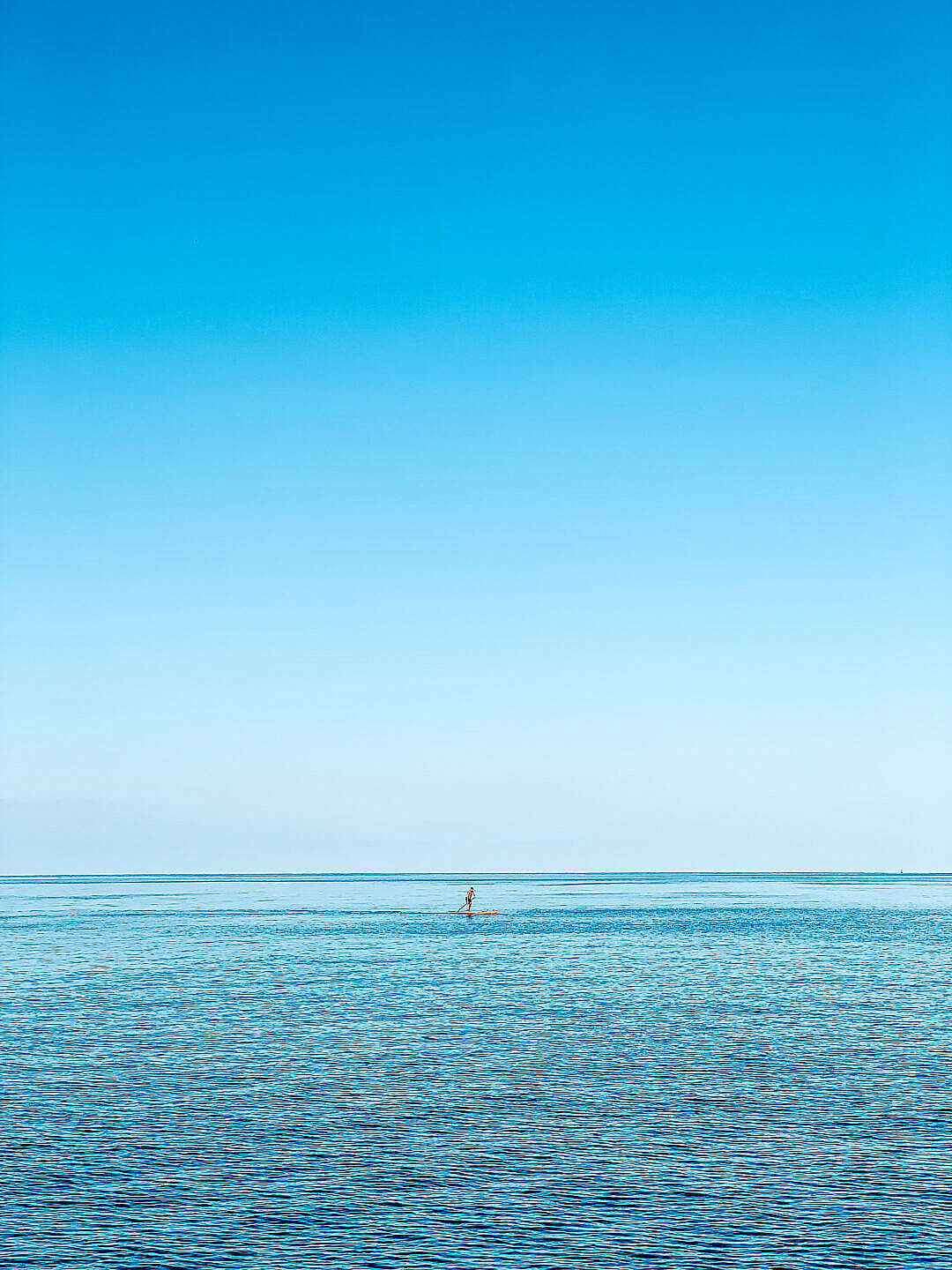 Download Man on a Paddleboard on the Open Sea FREE Stock Photo