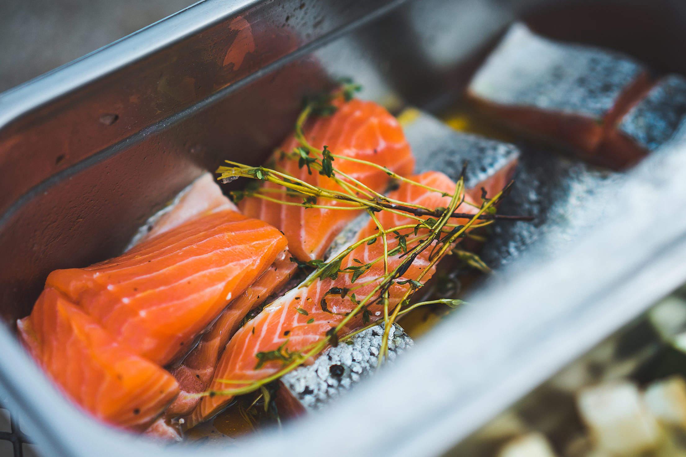 Marinated Salmon Free Stock Photo