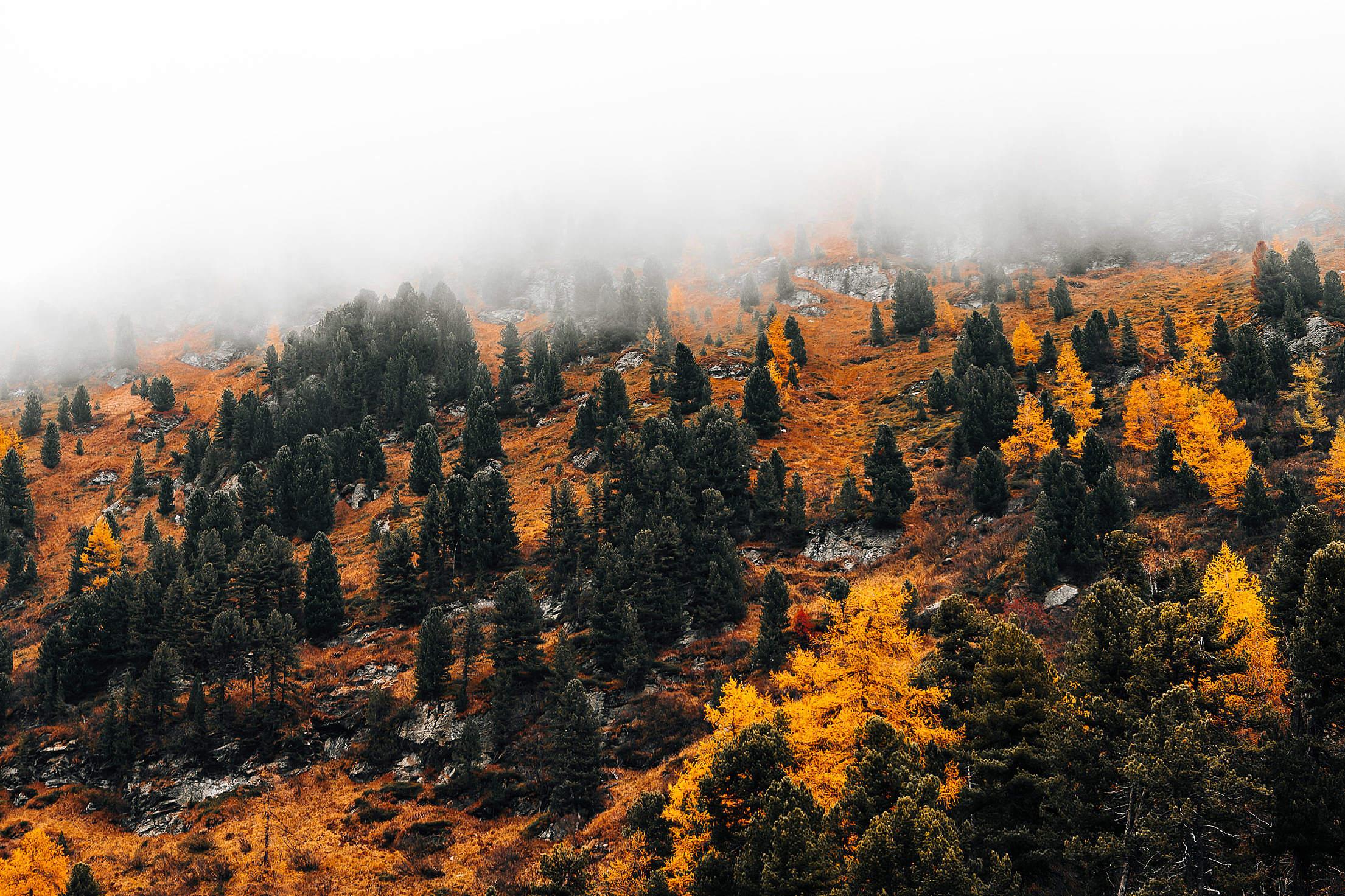 Mountain Hidden in a Fog, Autumn in Austria Free Stock Photo