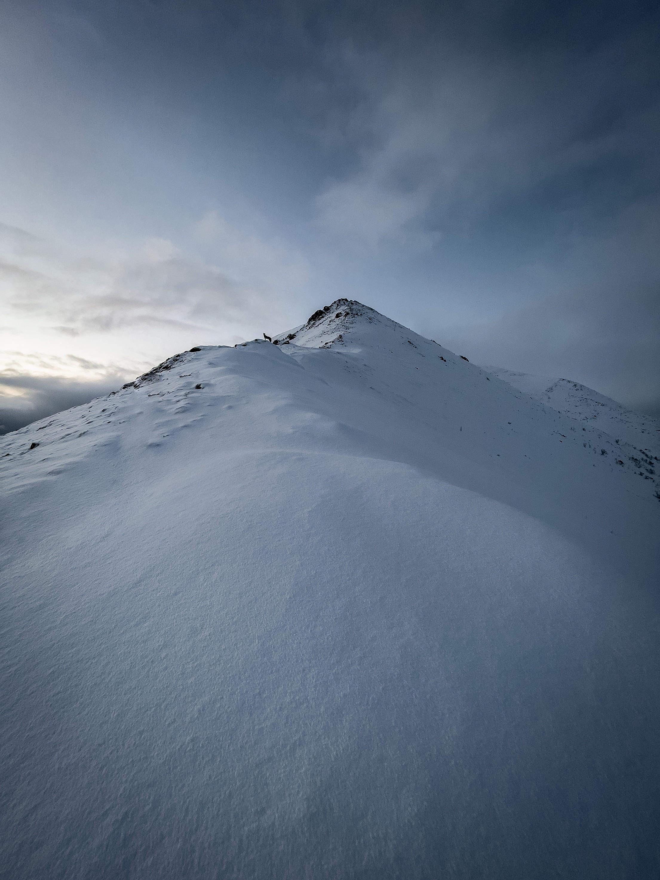 Mountain Ridge with Tiny Dog Silhouette Free Stock Photo