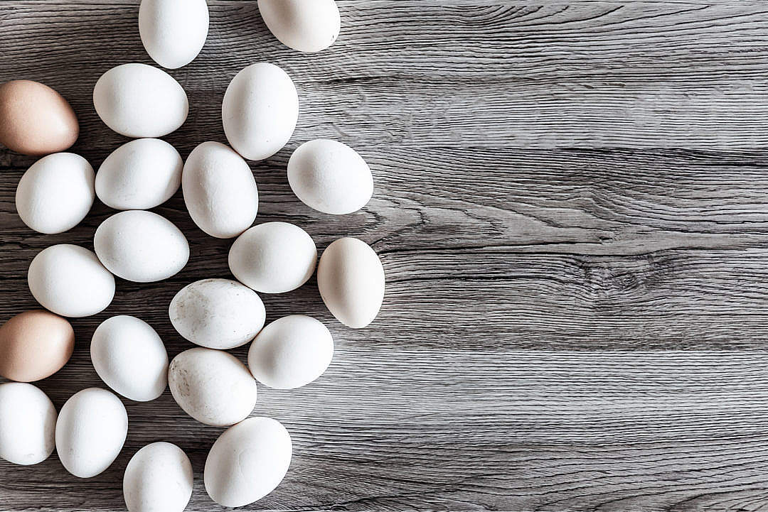 Download Natural White Eggs FREE Stock Photo