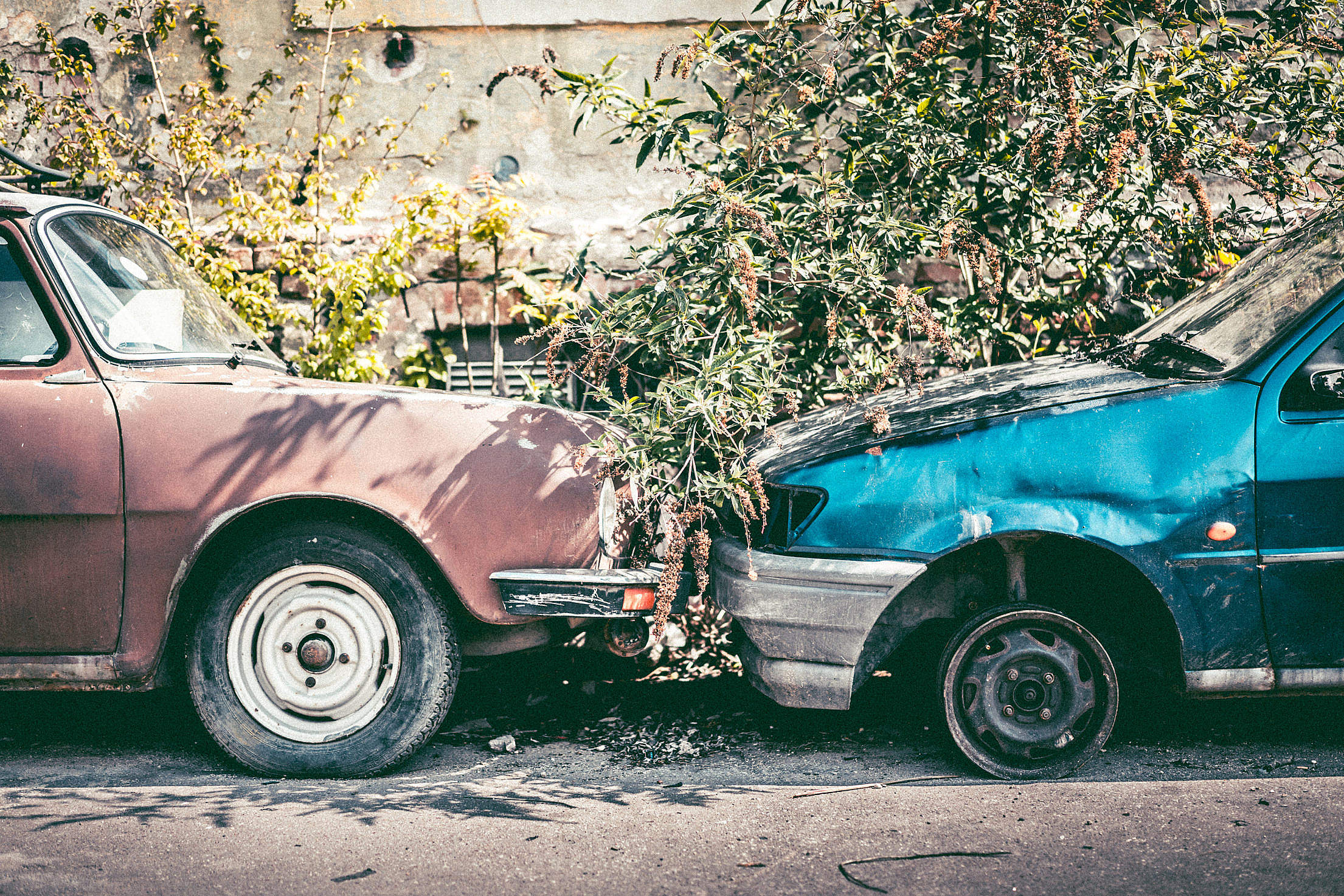 Old Broken Cars Free Stock Photo