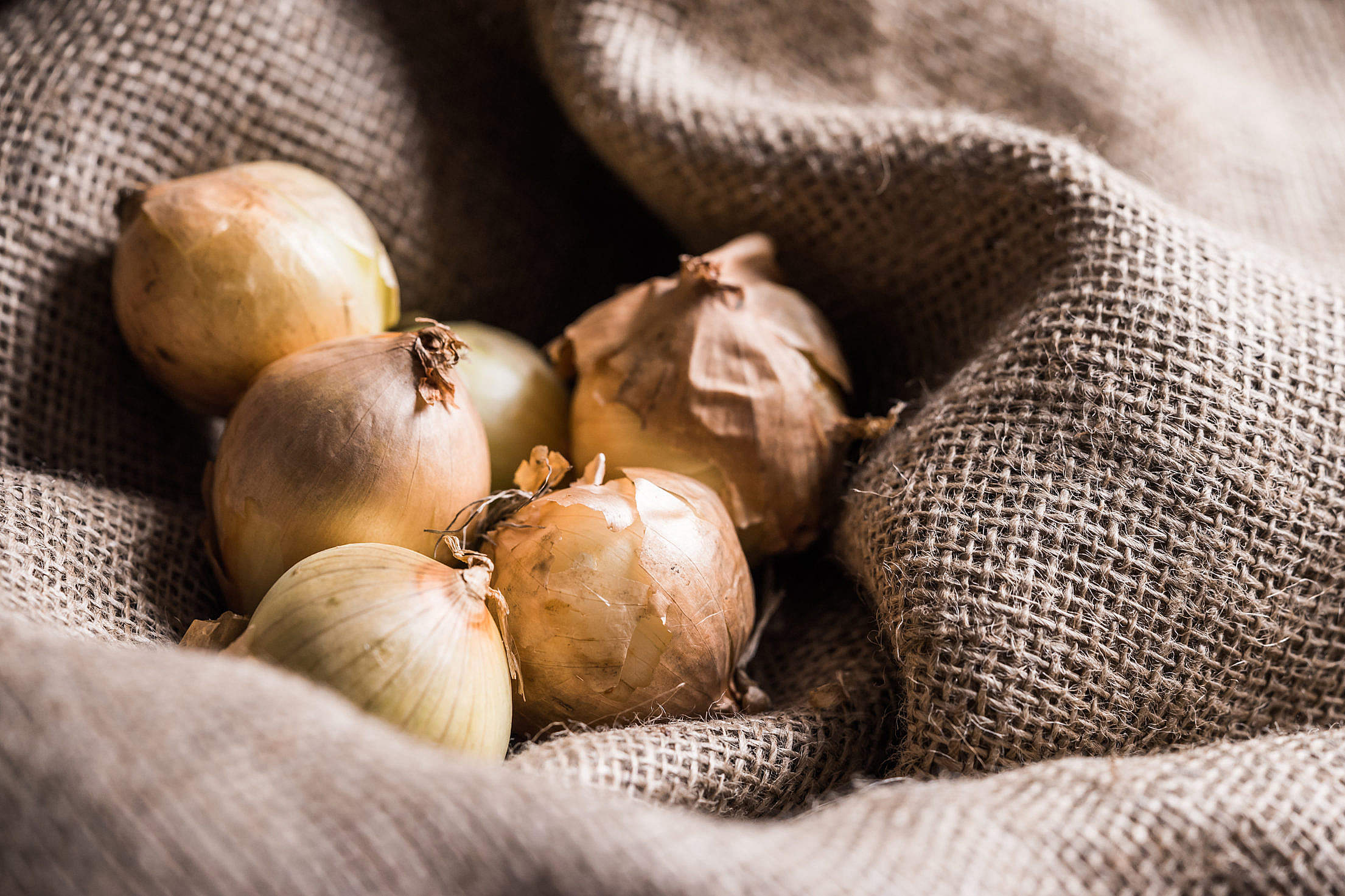 Onions in Sack Free Stock Photo
