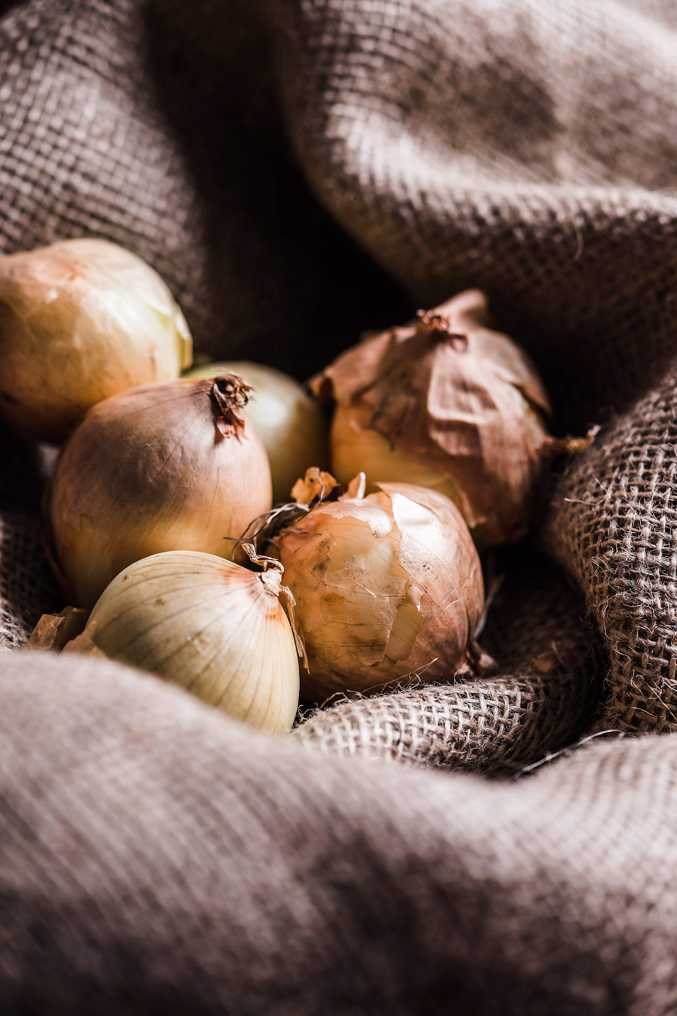 Onions in Sack Vertical Free Stock Photo