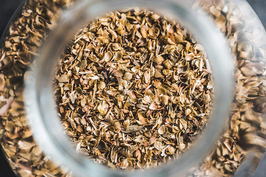 Download Oregano Spice FREE Stock Photo