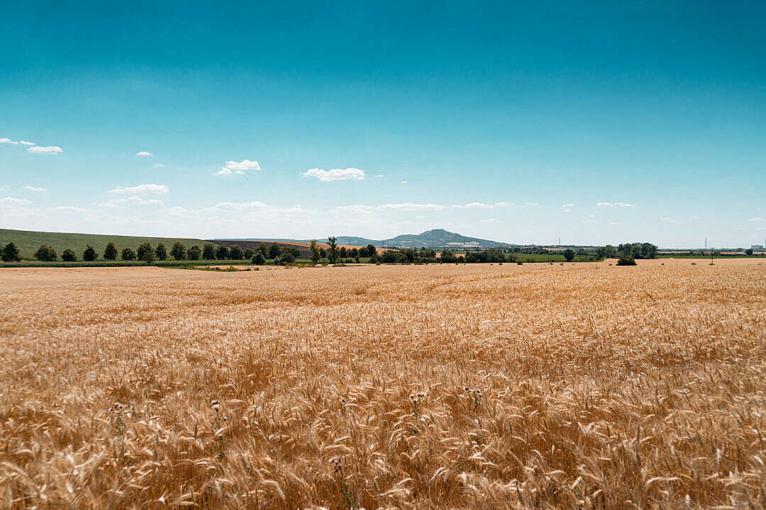 Download Palava Hills Panorama, South Moravia, Czechia FREE Stock Photo