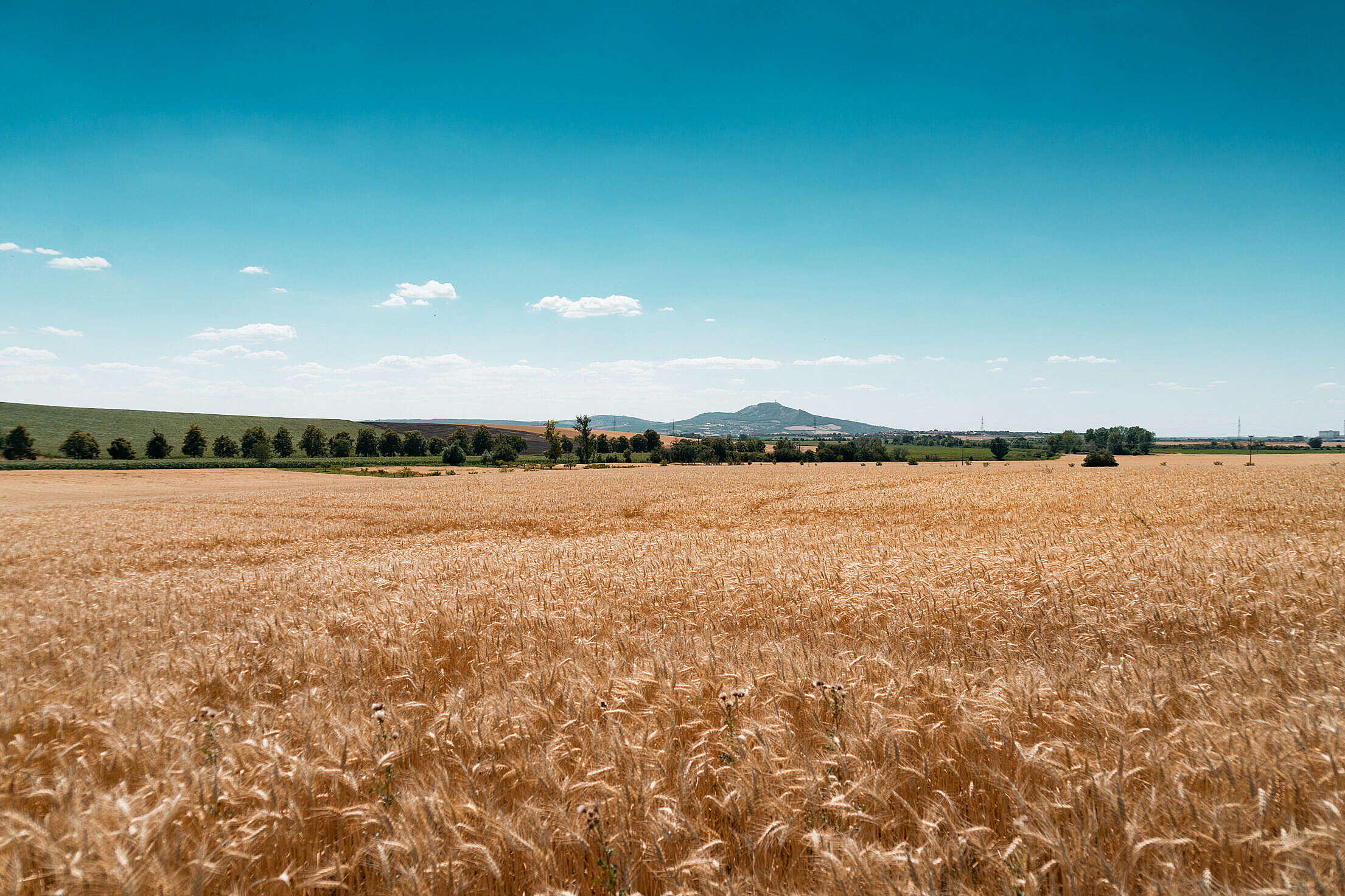 Palava Hills Panorama, South Moravia, Czechia Free Stock Photo