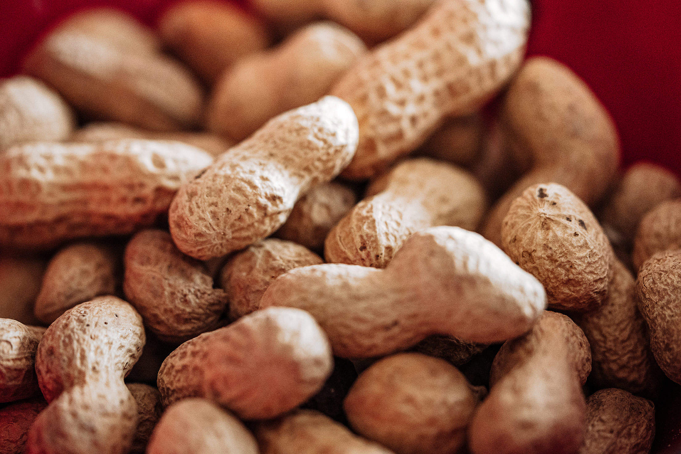 Peanuts in a Bowl Free Stock Photo