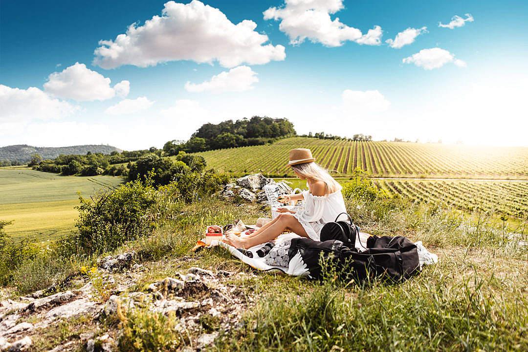 Download Picnic Near The Vineyard FREE Stock Photo