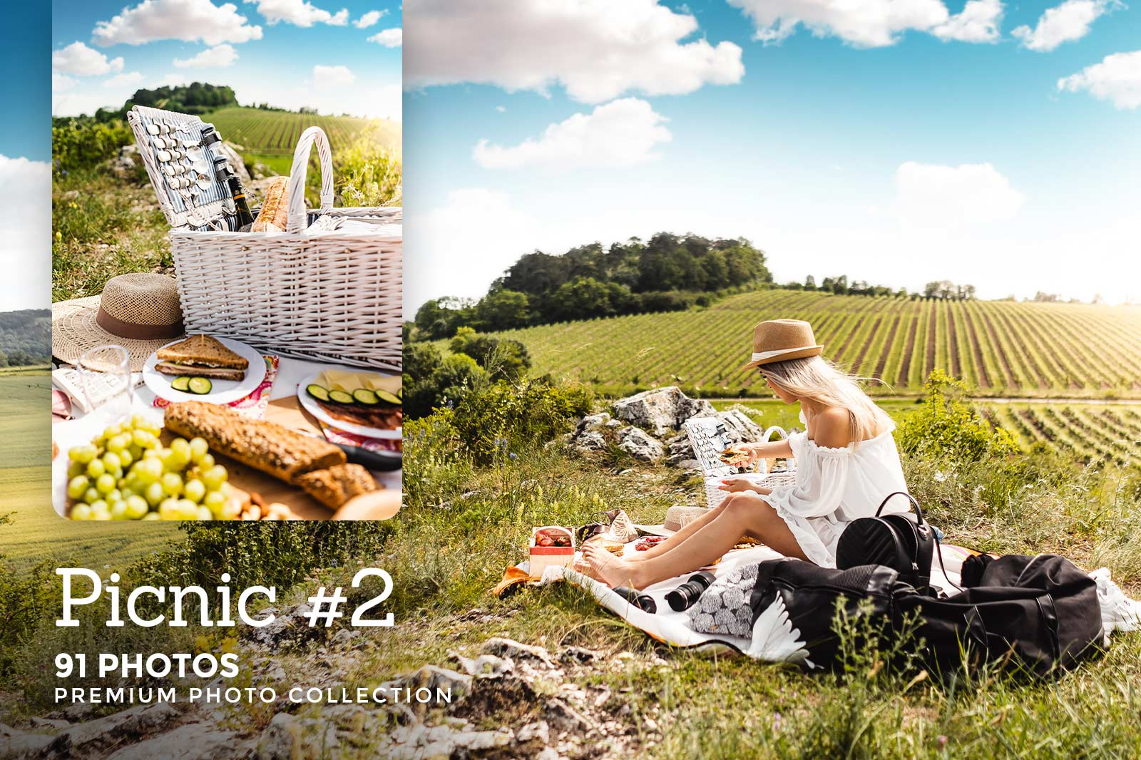 Click here to see Picnic #2 PREMIUM Collection!