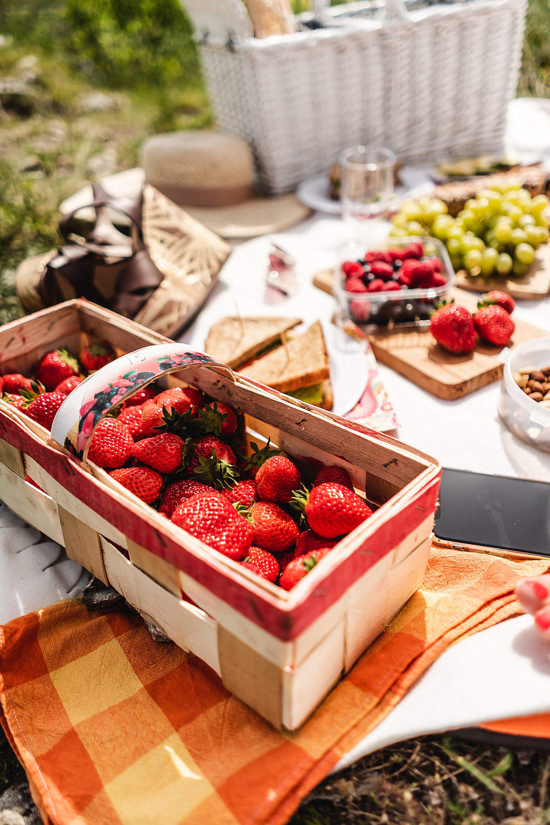 Download Picnic with Strawberries FREE Stock Photo