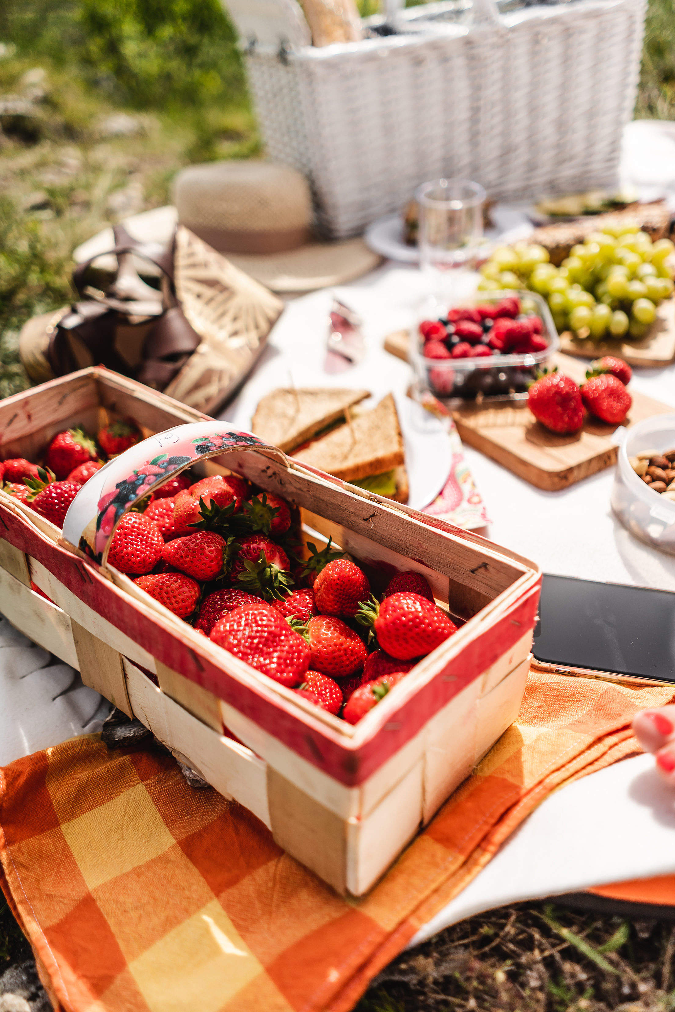 Picnic with Strawberries Free Stock Photo