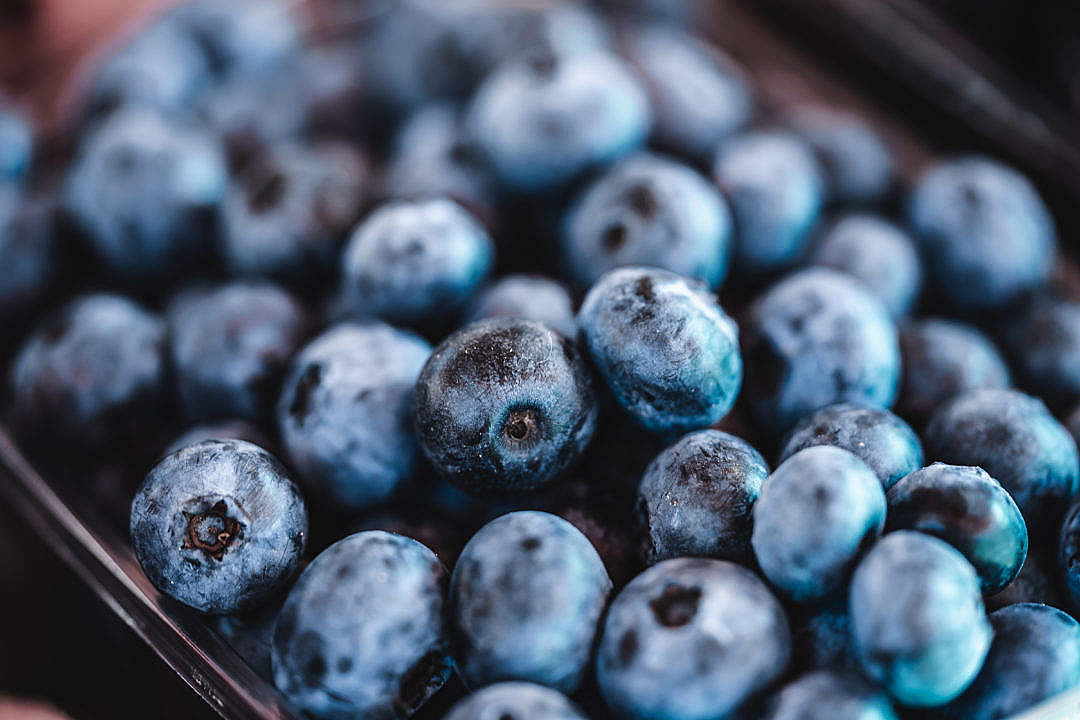 Download Pile of Blueberries FREE Stock Photo