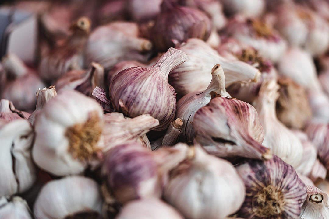 Download Pile of Garlic FREE Stock Photo