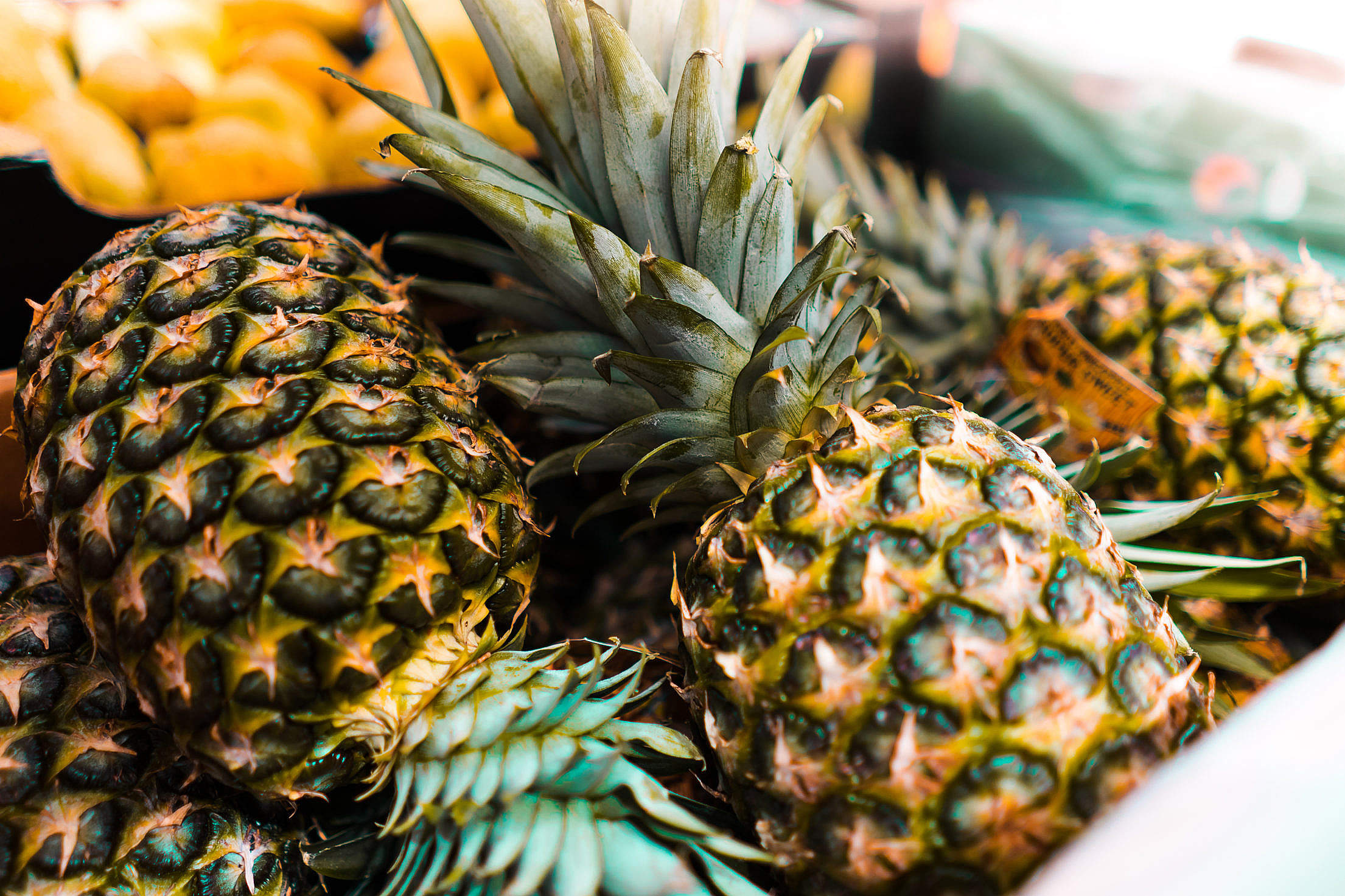Pineapples Free Stock Photo