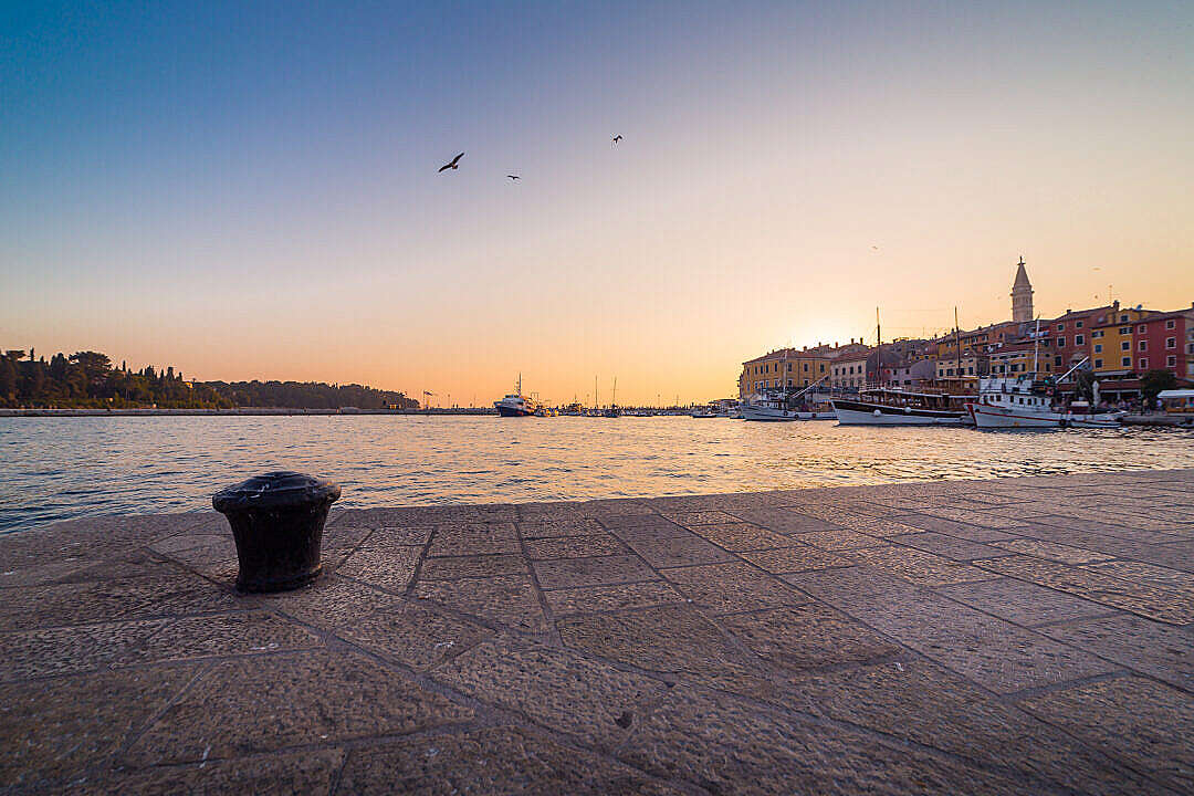 Download Port in Rovinj at Sunset FREE Stock Photo