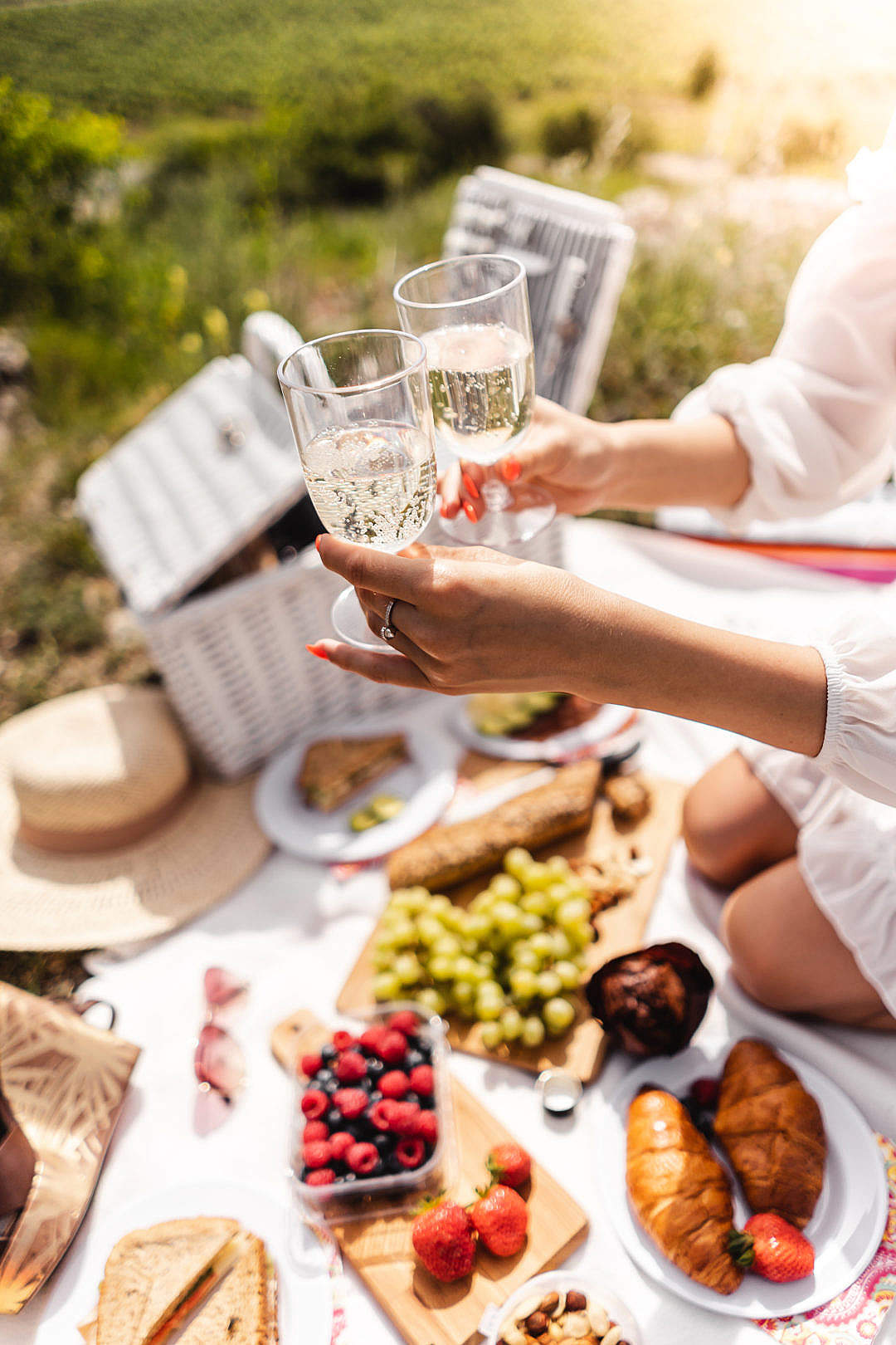Download Prosecco at a Picnic FREE Stock Photo