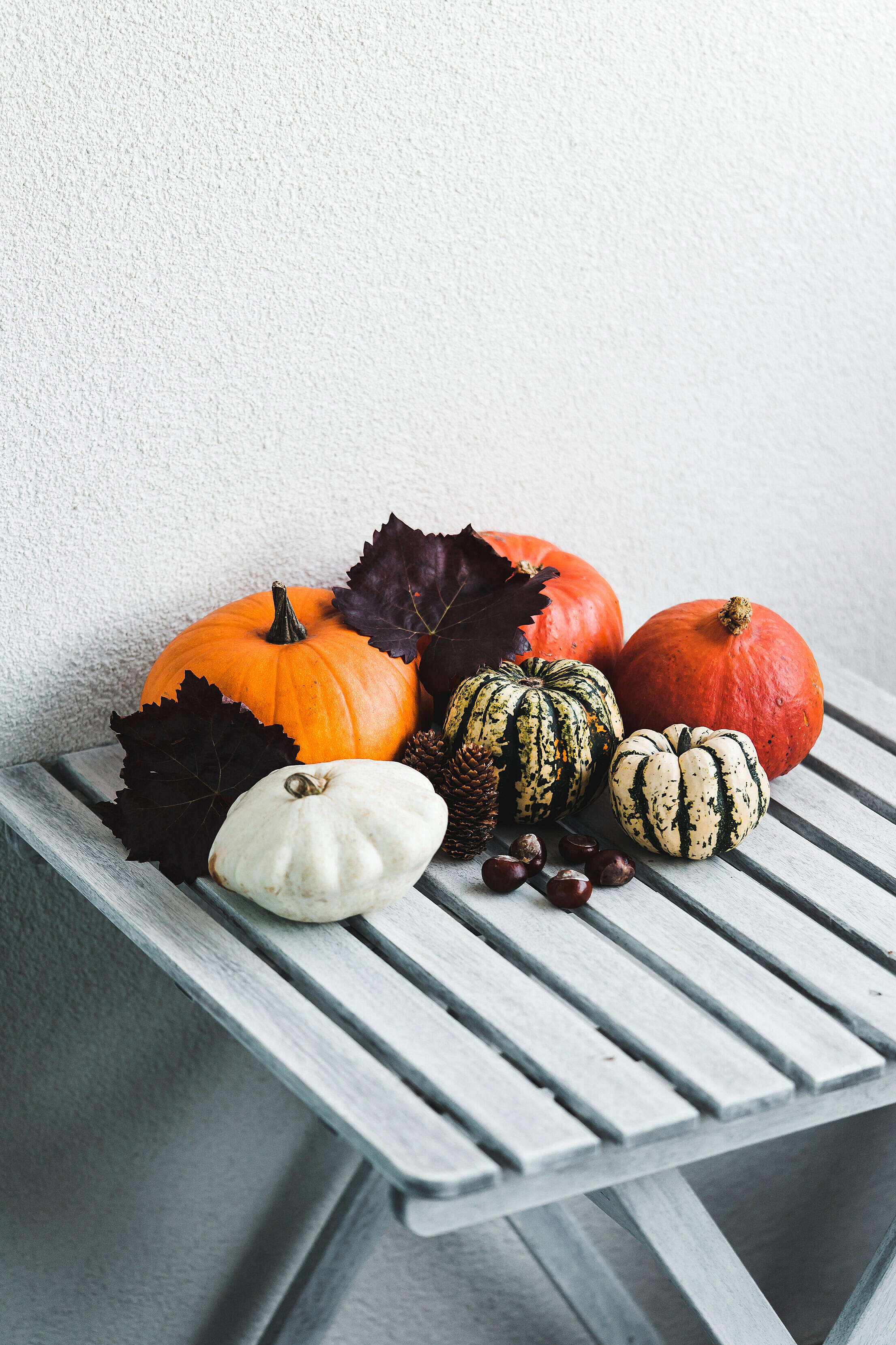 Pumpkins in Different Shapes as Fall Decorations Free Stock Photo