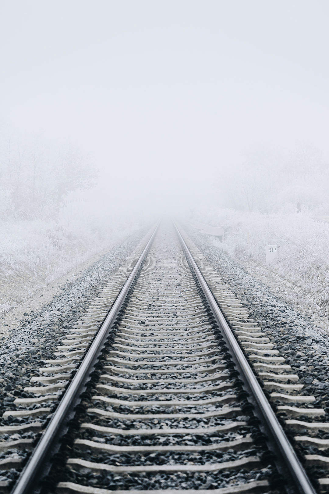 Download Railway in The Fog FREE Stock Photo