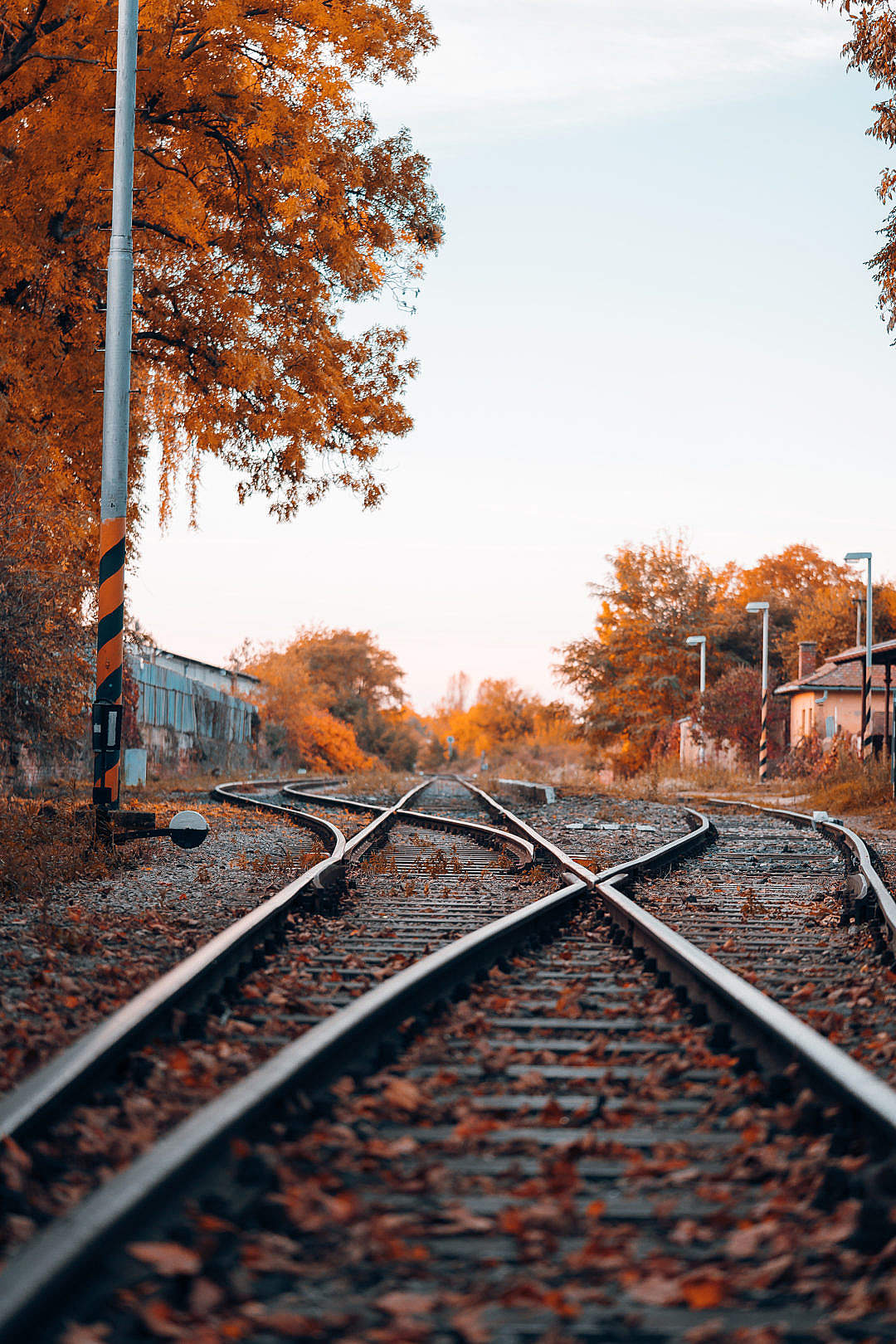 Download Railway Line FREE Stock Photo