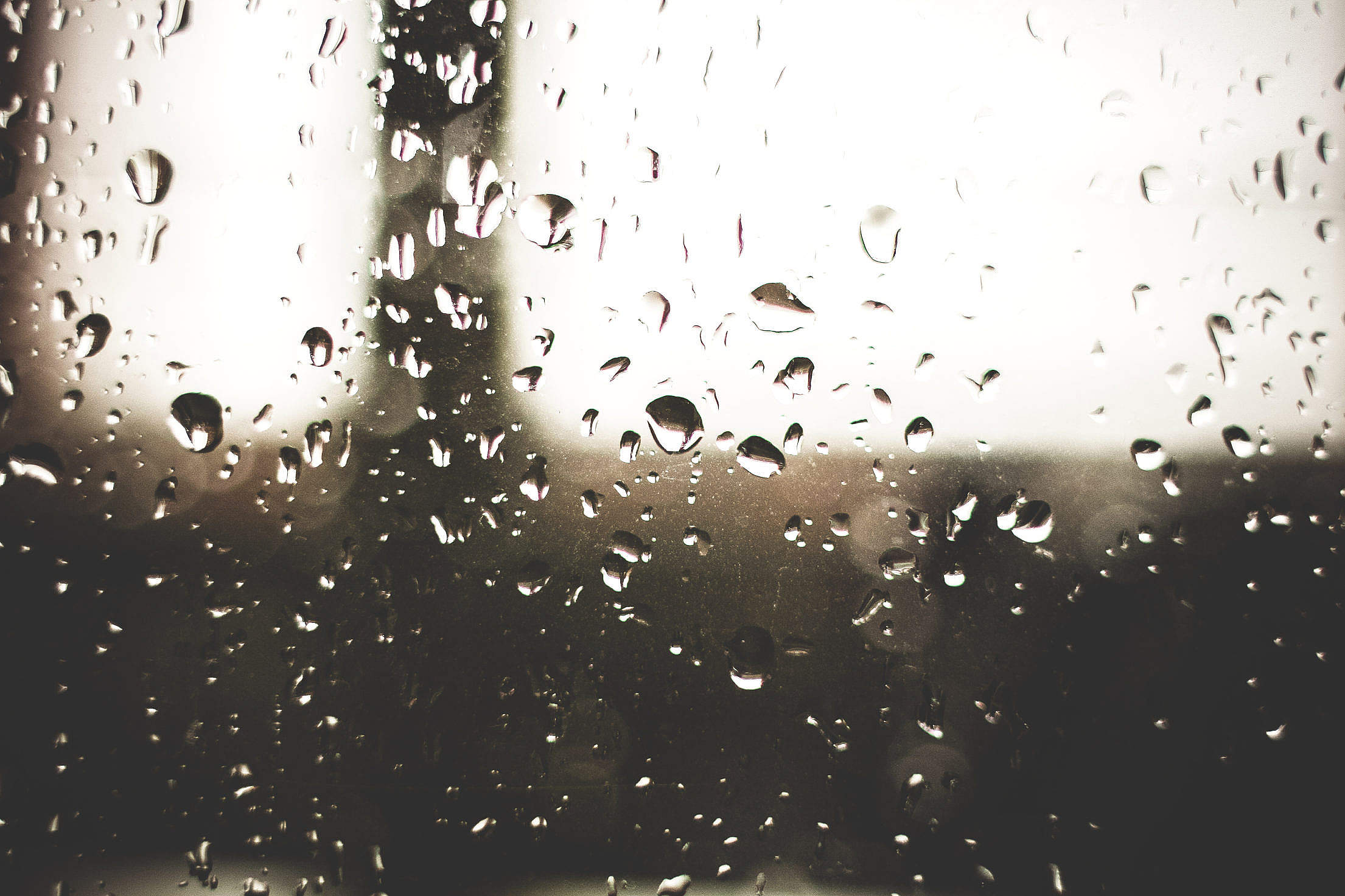 Raindrops on a Window Free Stock Photo