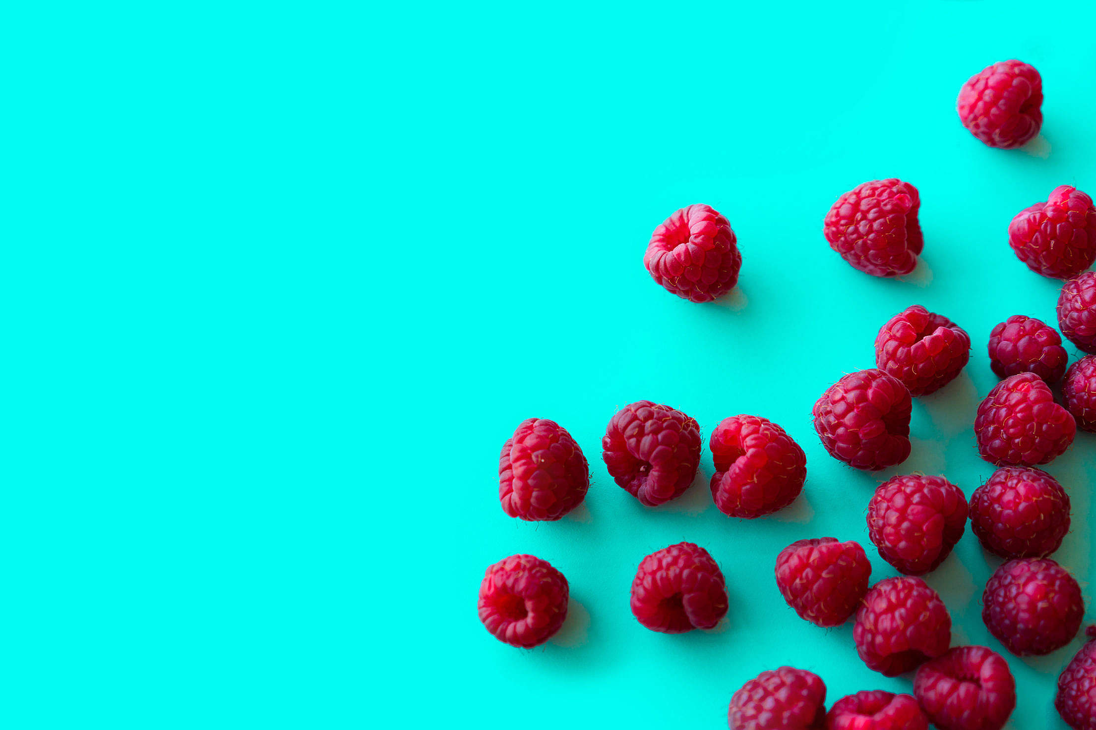 Raspberries with Blue Background Space for Text Free Stock Photo