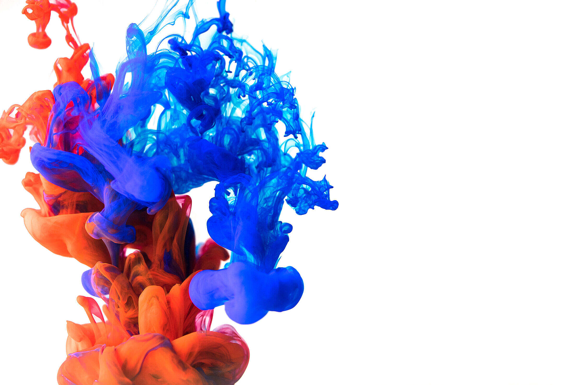 Red and Blue Ink Explosion Free Stock Photo