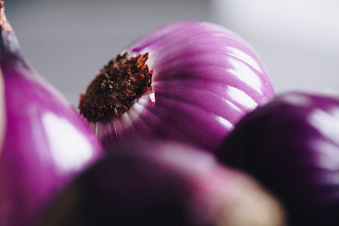Download Red Onions FREE Stock Photo