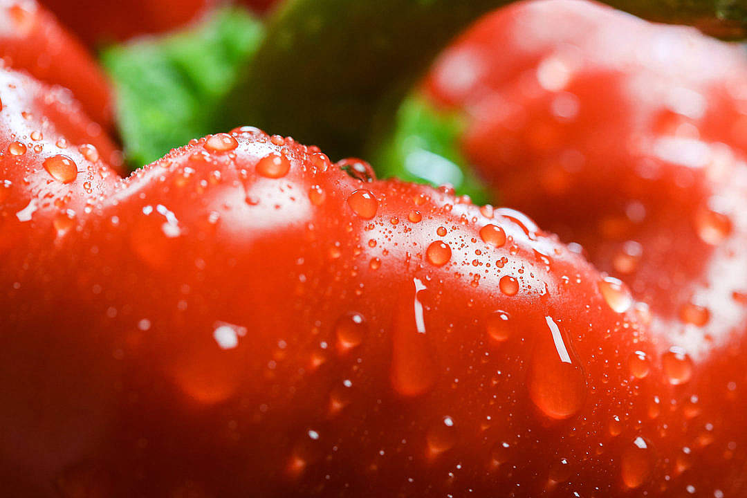 Download Red Paprika in Water Drops Close Up FREE Stock Photo