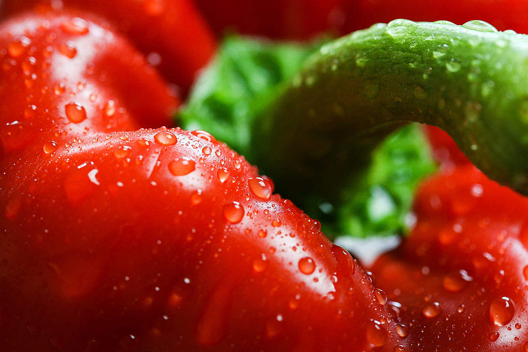 Download Red Paprika with Drops Close Up FREE Stock Photo