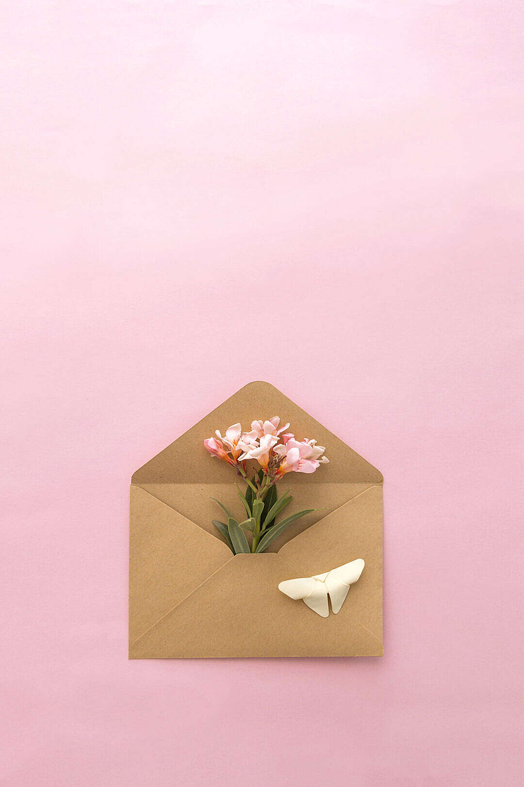 Download Retro Envelope with Flowers Inside FREE Stock Photo
