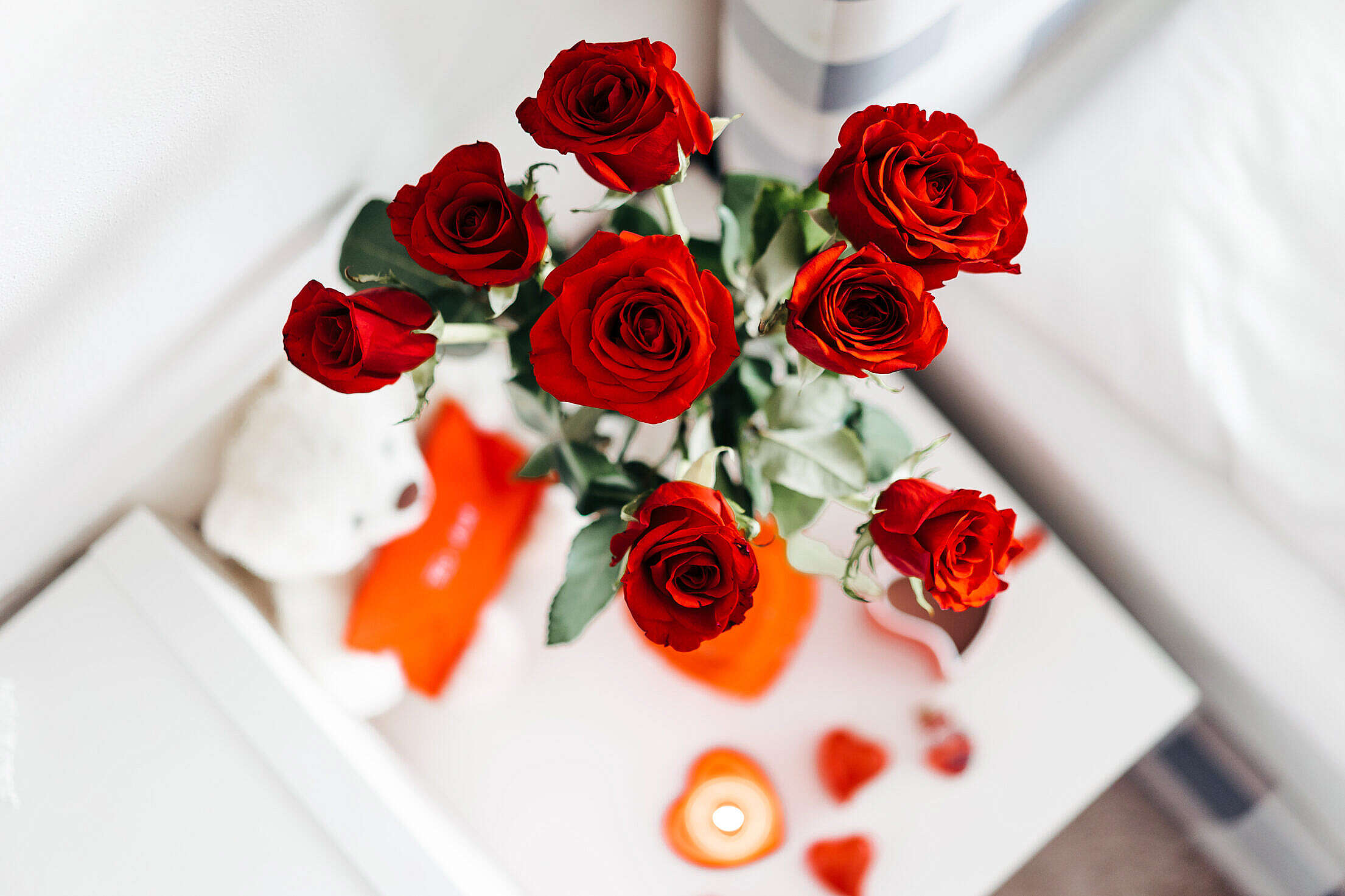 Roses for Valentine's Day Free Stock Photo