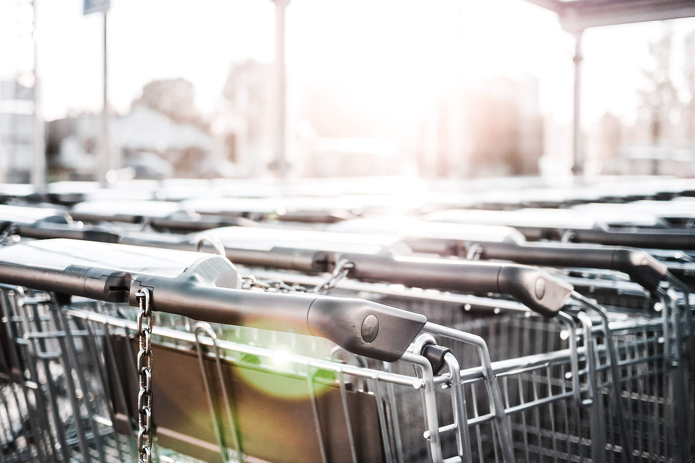 Row of Parked Shopping Carts Free Stock Photo