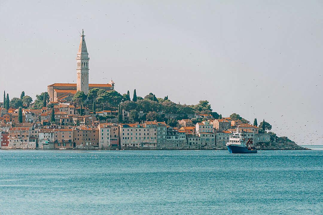 Download Seagulls Following Fishing Boat near Rovinj Town, Croatia FREE Stock Photo