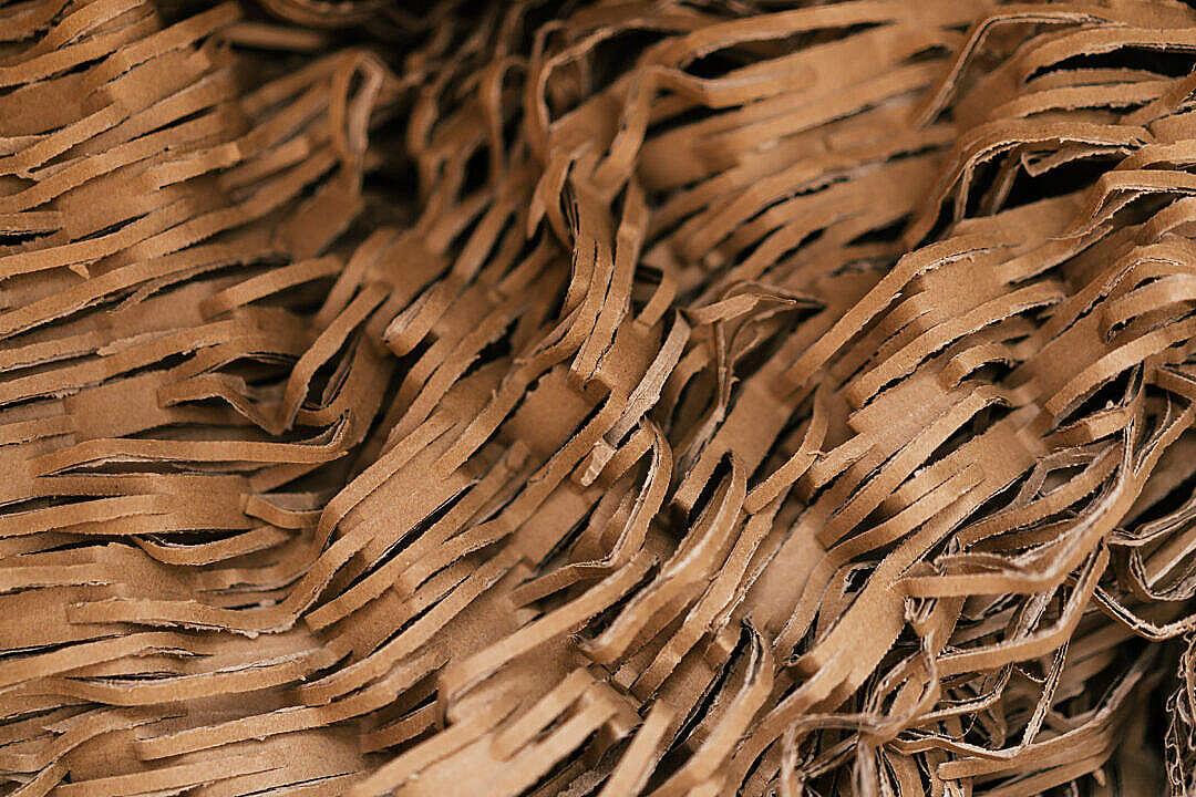 Download Shredded Cardboard Filling FREE Stock Photo